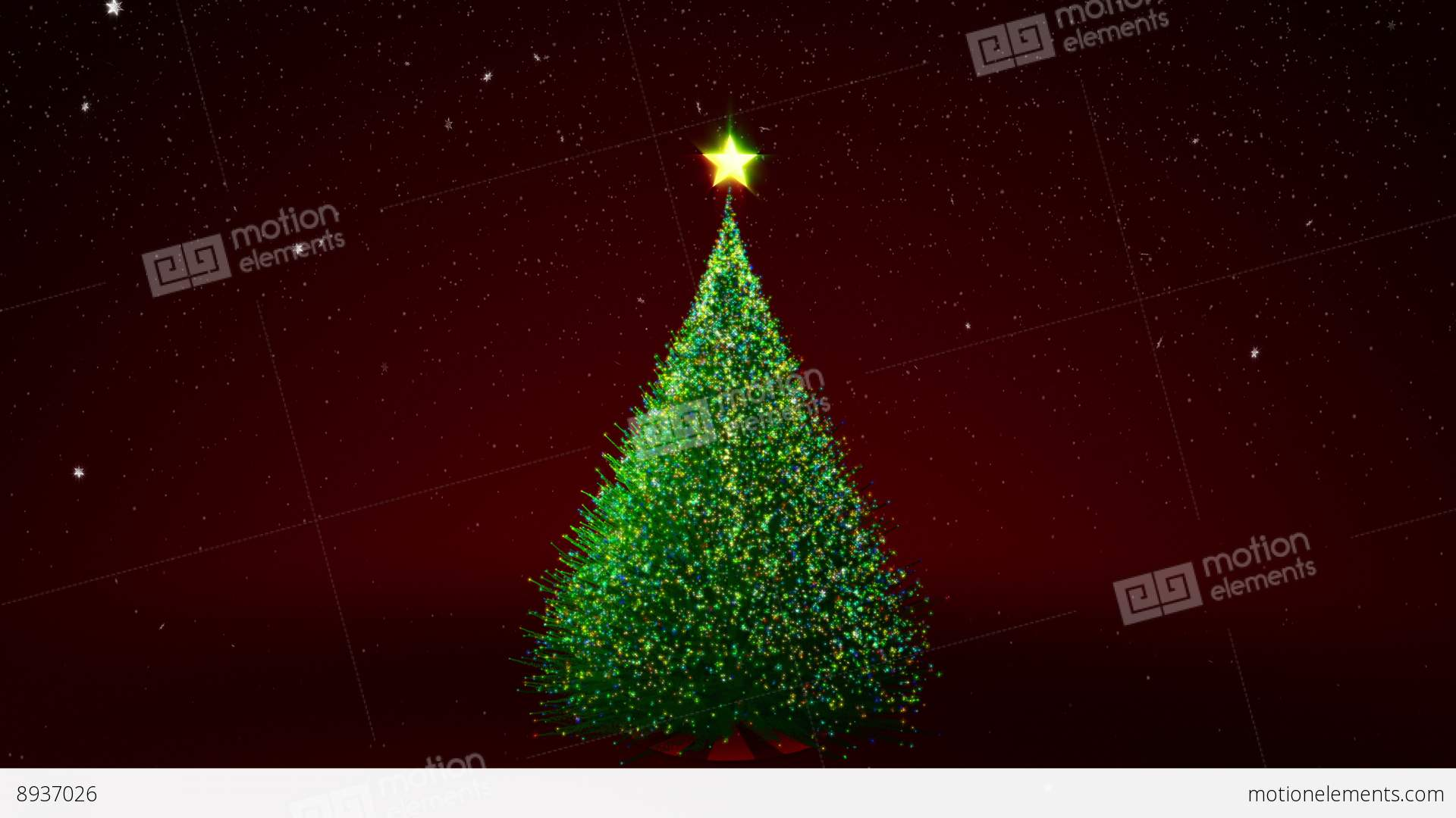 Christmas Tree With Colour Lights Stock Animation | 8937026