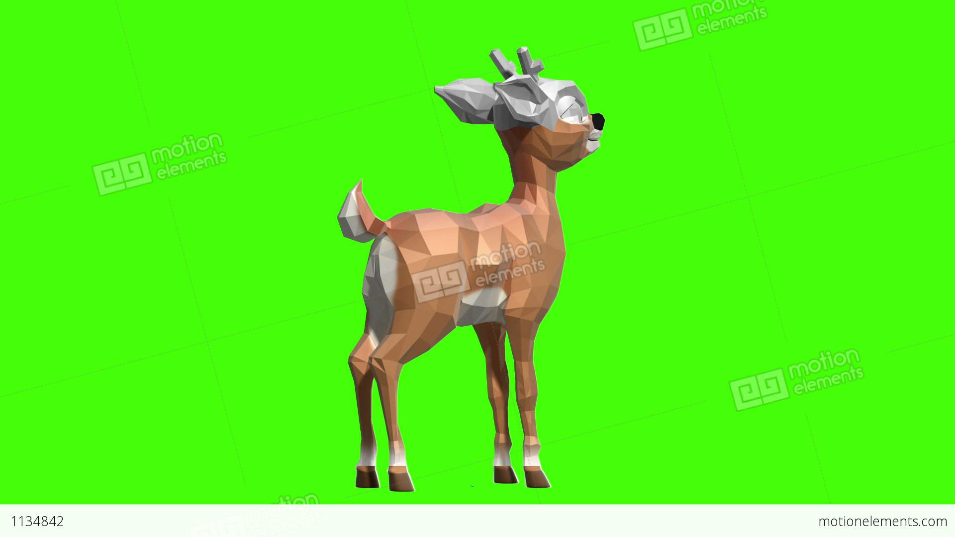 3d Modeling Texturing Animation Render Stock Animation