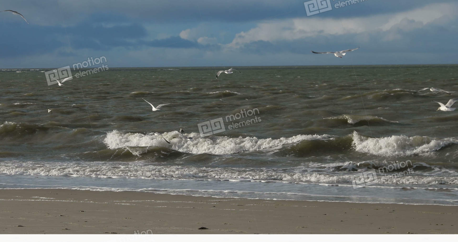 Minimalist Style Birds On North Frisian Island Beach Of Amrum In Germany