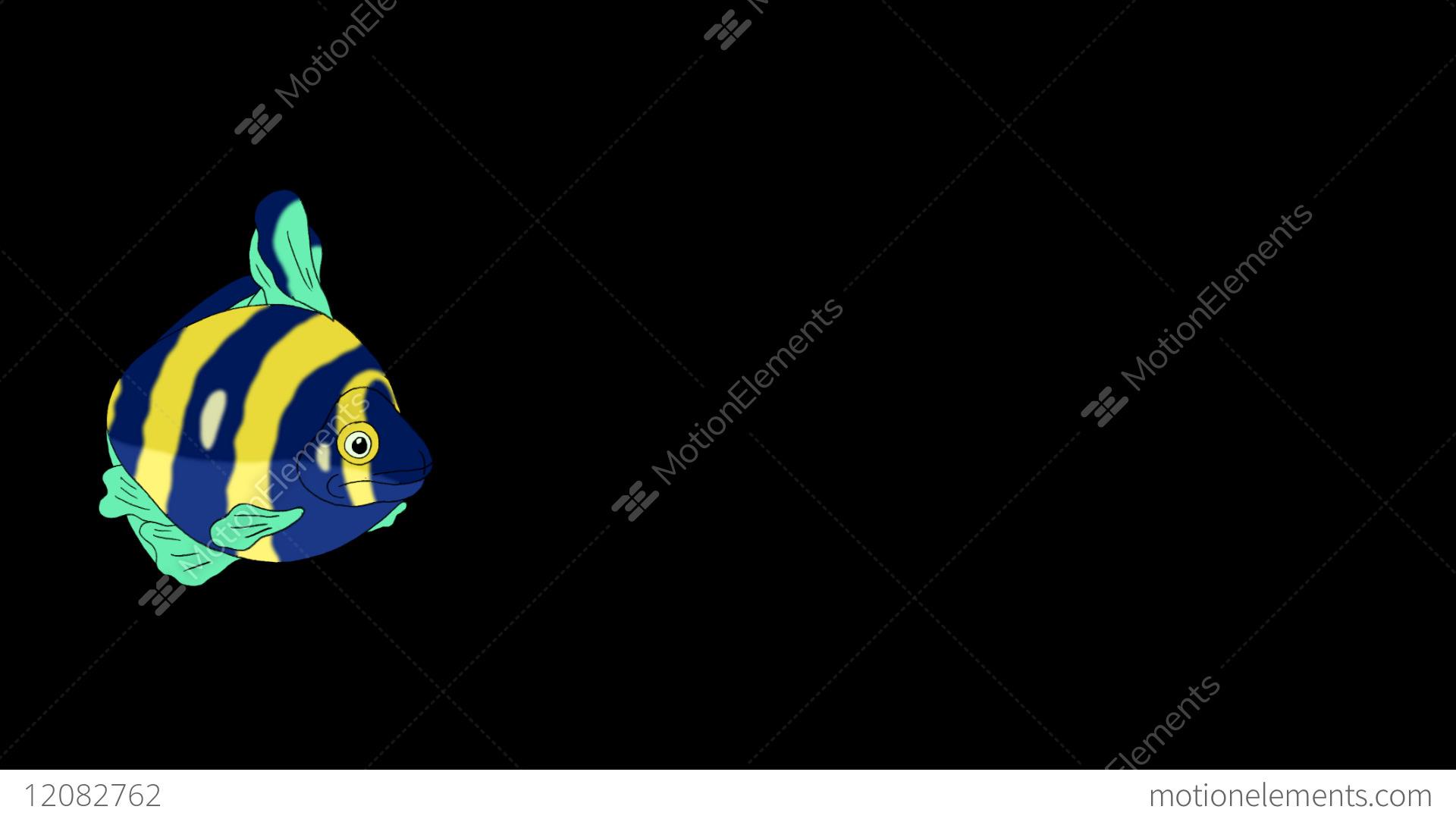 Blue Yellow Aquarium Fish Alpha Matte Looped Stock Animation 12082762