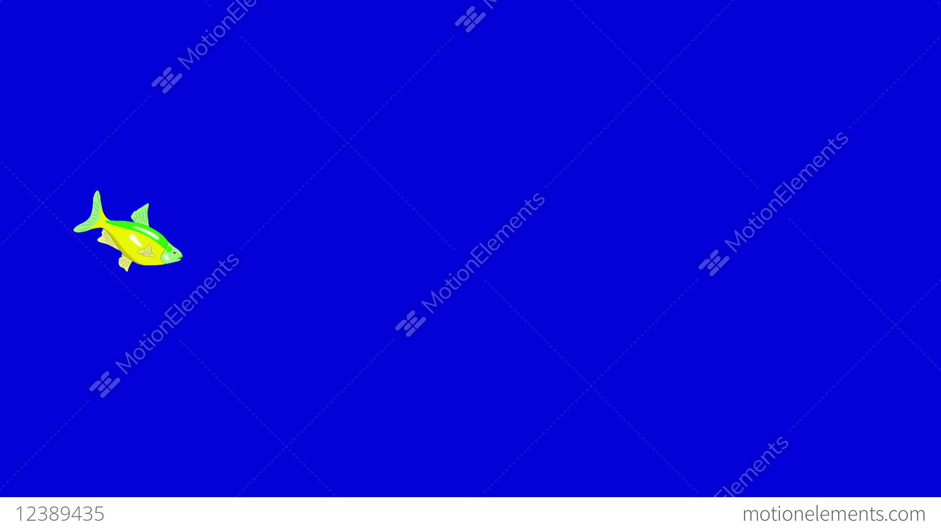 Small Green Yellow Aquarium Fish Chroma Key Stock Animation 12389435