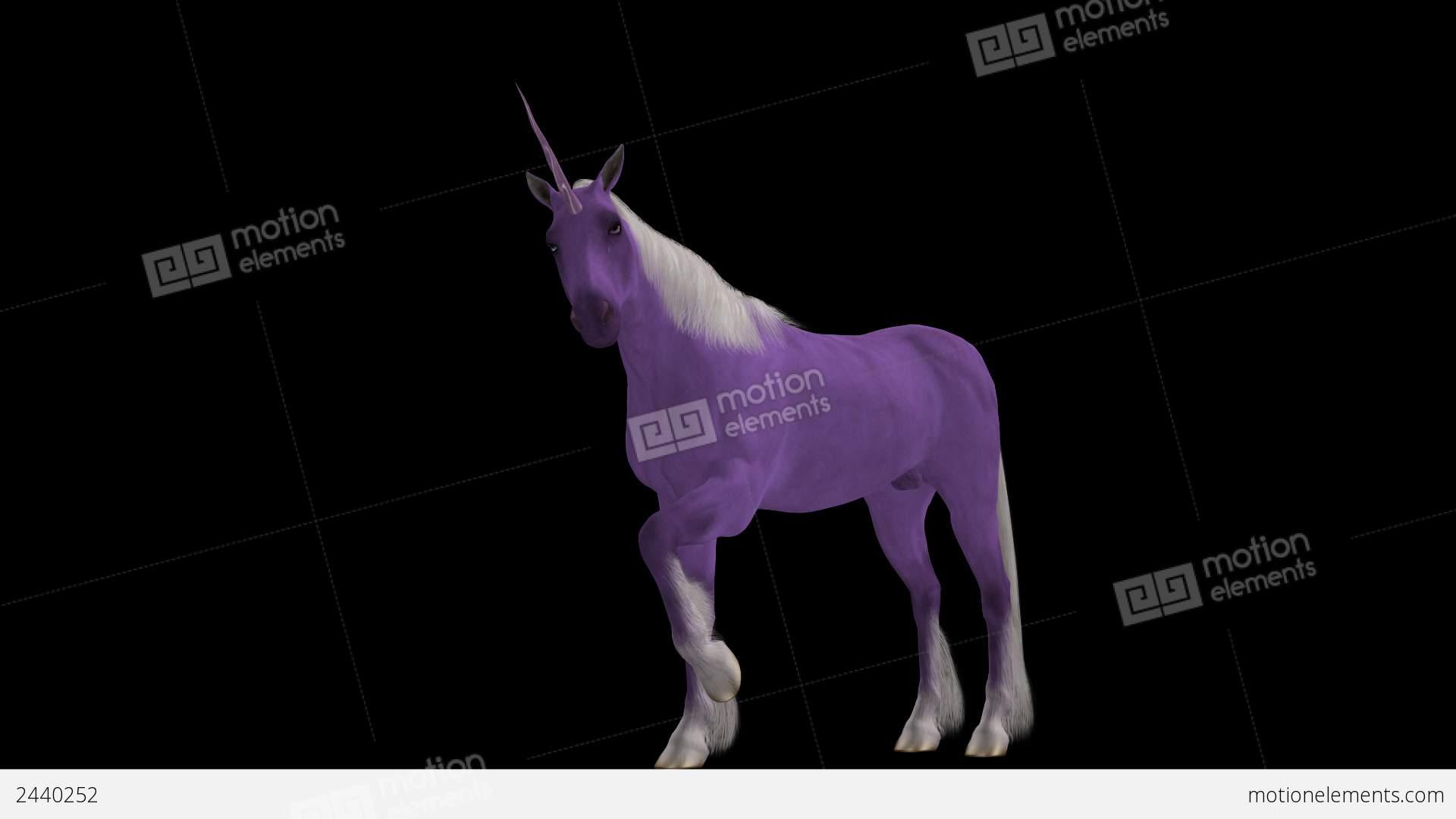 Pink unicorn fantasy horse loop alpha channe stock animation pink unicorn fantasy horse loop alpha channe stock video footage voltagebd Images