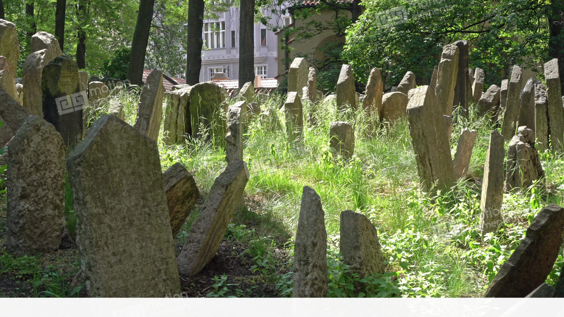 Jewish Cemetery In Prague Stock Video Footage