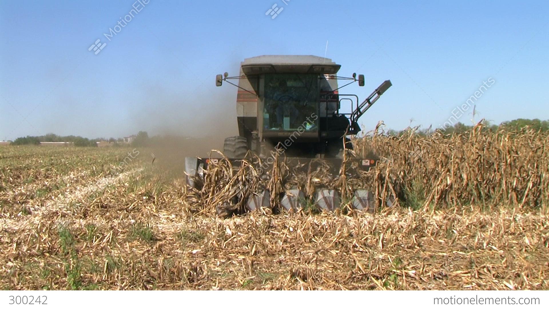 combine harvesting corn 06 stock video footage