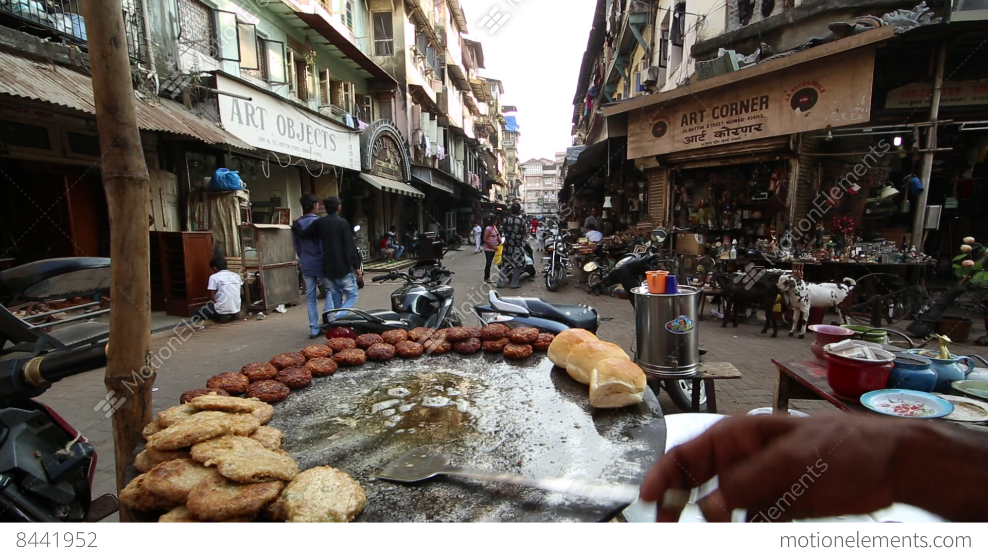 Wellness Dog Food India