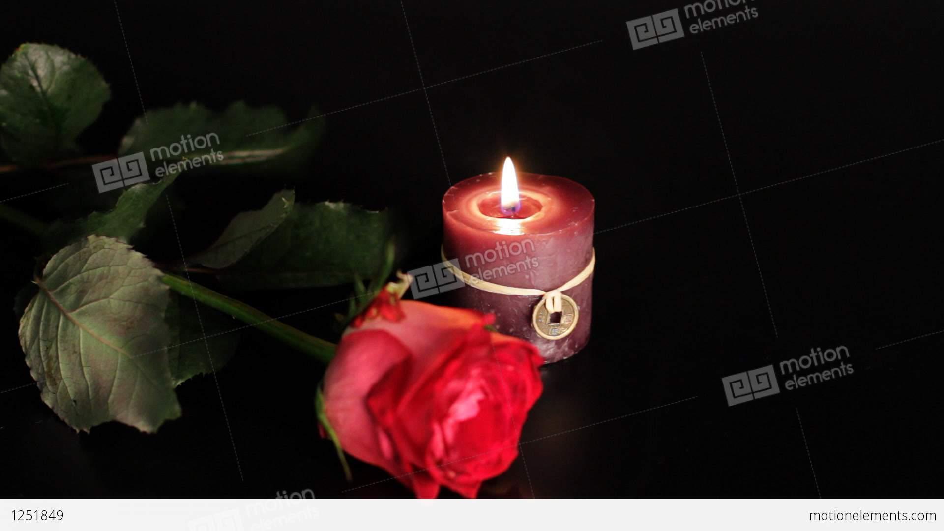 Цветы, свечи и мягкие игрушки в 7