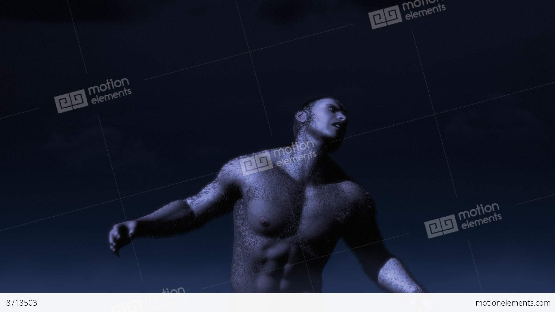 Werewolf Transformation (Animation) by RafaBolas on DeviantArt  Werewolf Transformation Animation