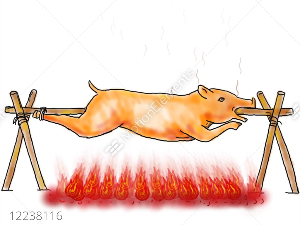 Roast pig lechon roasting drawing 2d animation stock video footage