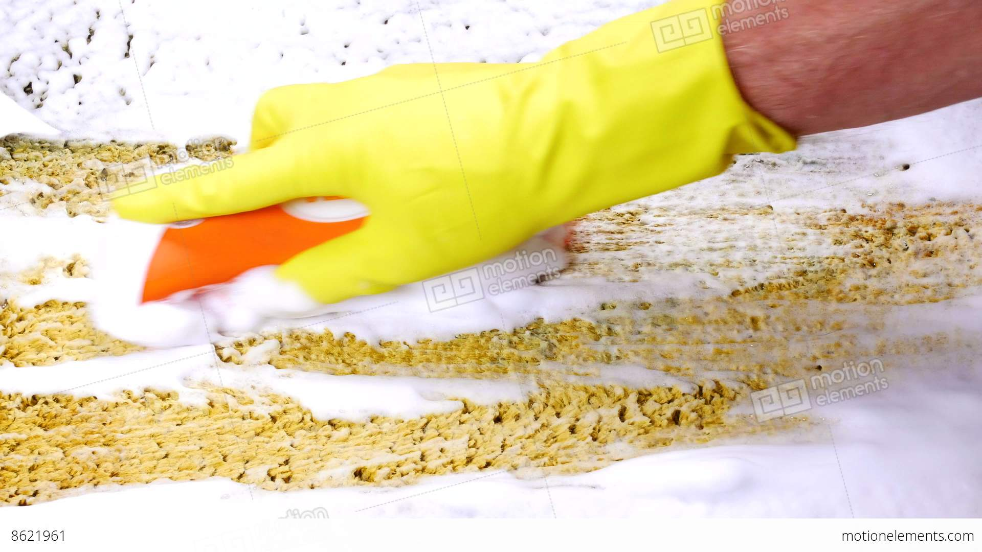 Cleaning Dirty Carpet With Hand Brush Stock Video Fooe