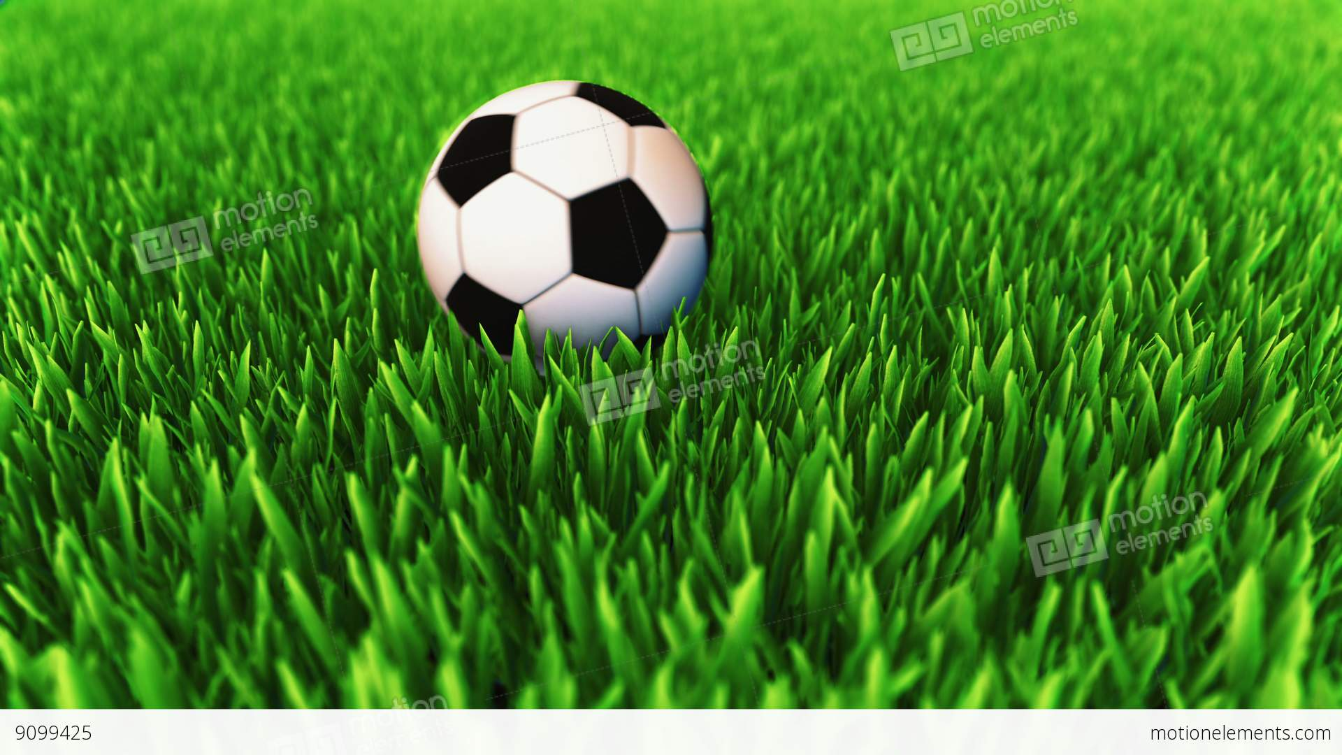 Classic Colored Soccer Ball Rolling On The Grass Field And ... Rolling Soccer Ball