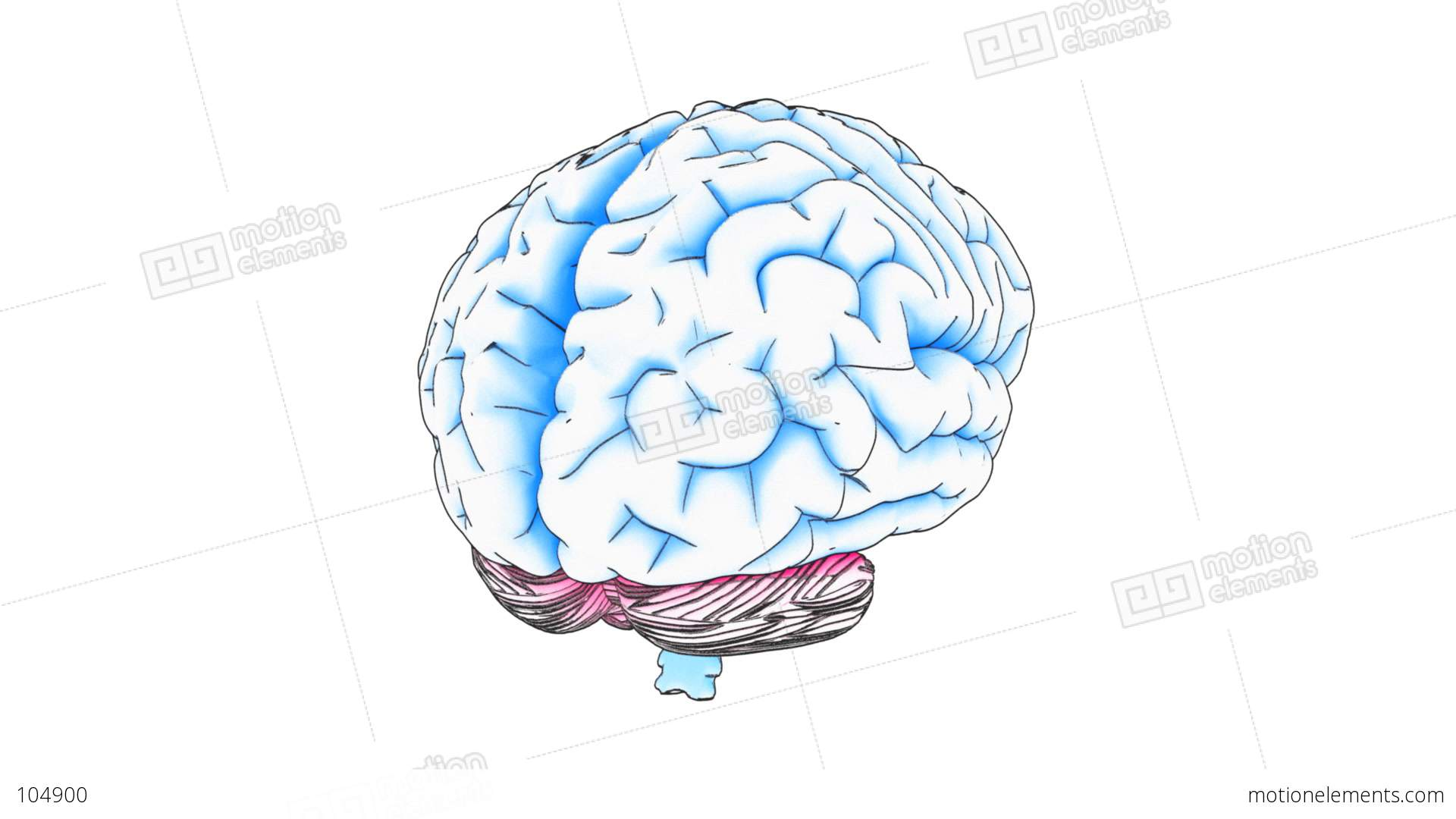 Brain draw stock animation 104900 brain draw stock video footage ccuart Image collections