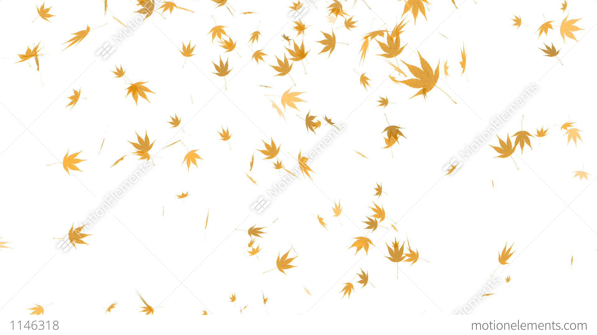 HD Loopable Falling Autumn Leaves Animation Stock ...
