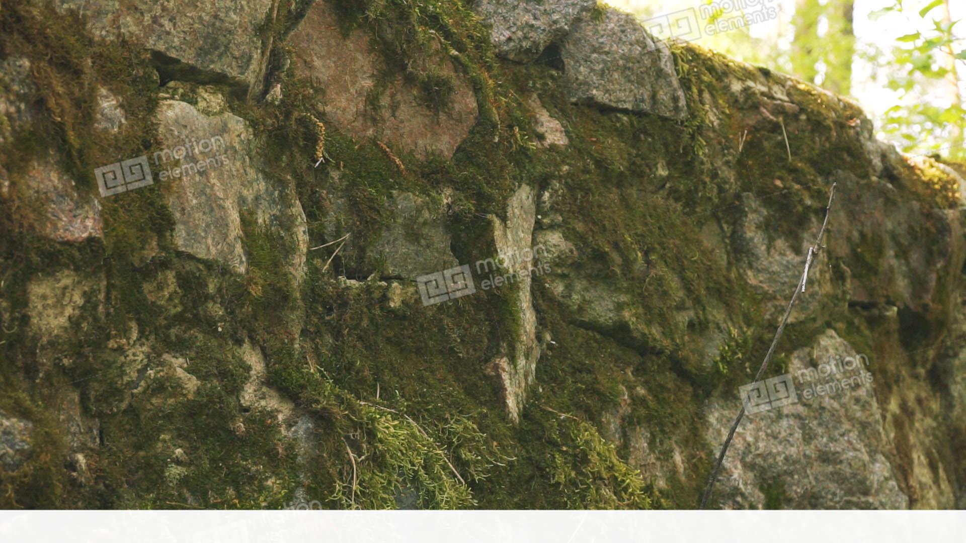 Sierstrip Chroom Badkamer : Green marble wall ecosia
