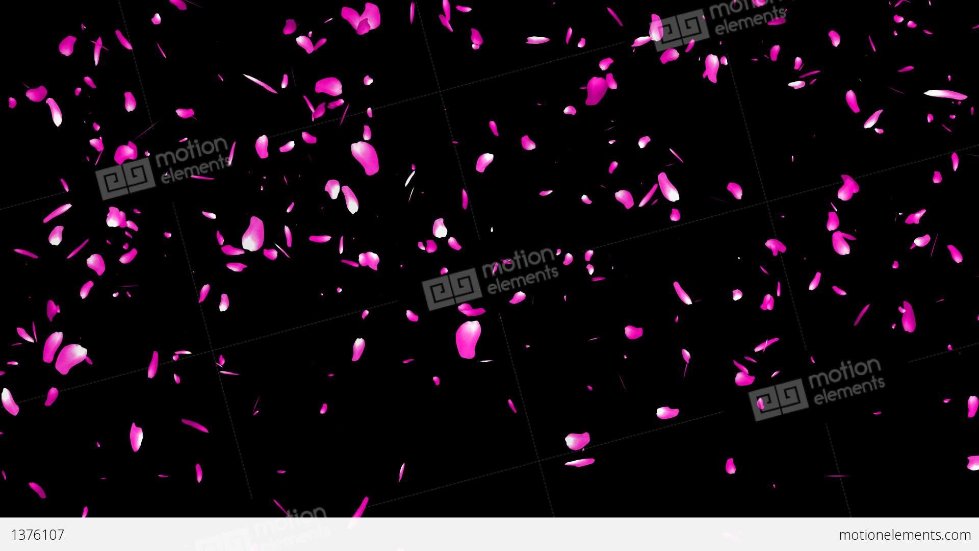 Money Falling Png Falling Sakura Petals ...