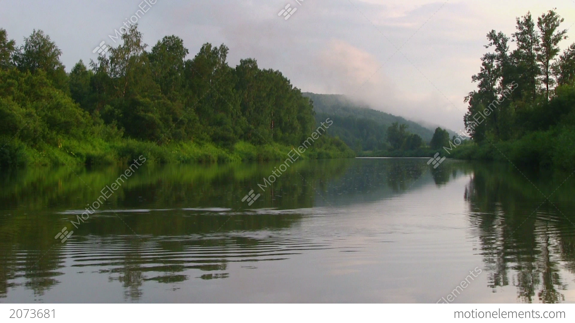 Calm Landscape With Quiet River In A Green Forest Stock ...