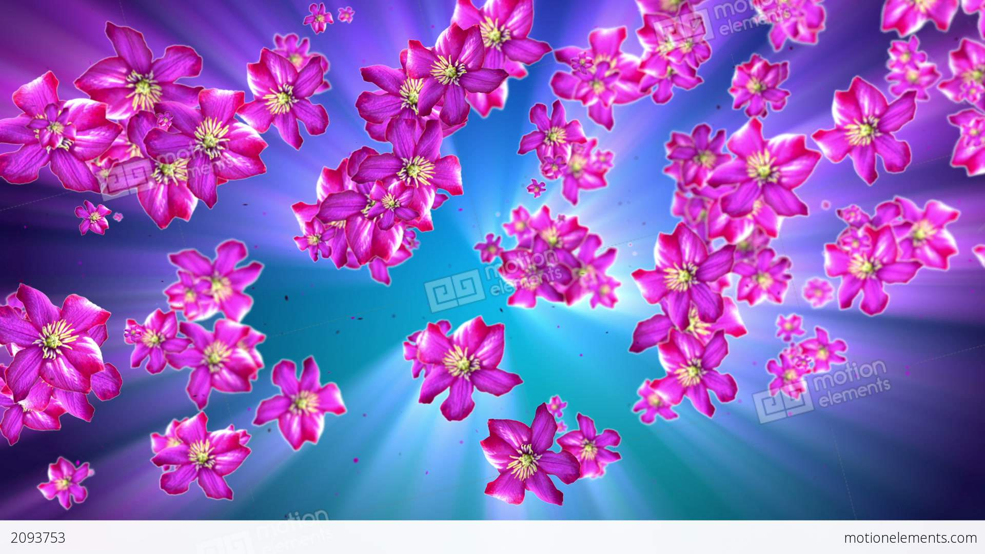 mother nature flower background stock animation 2093753