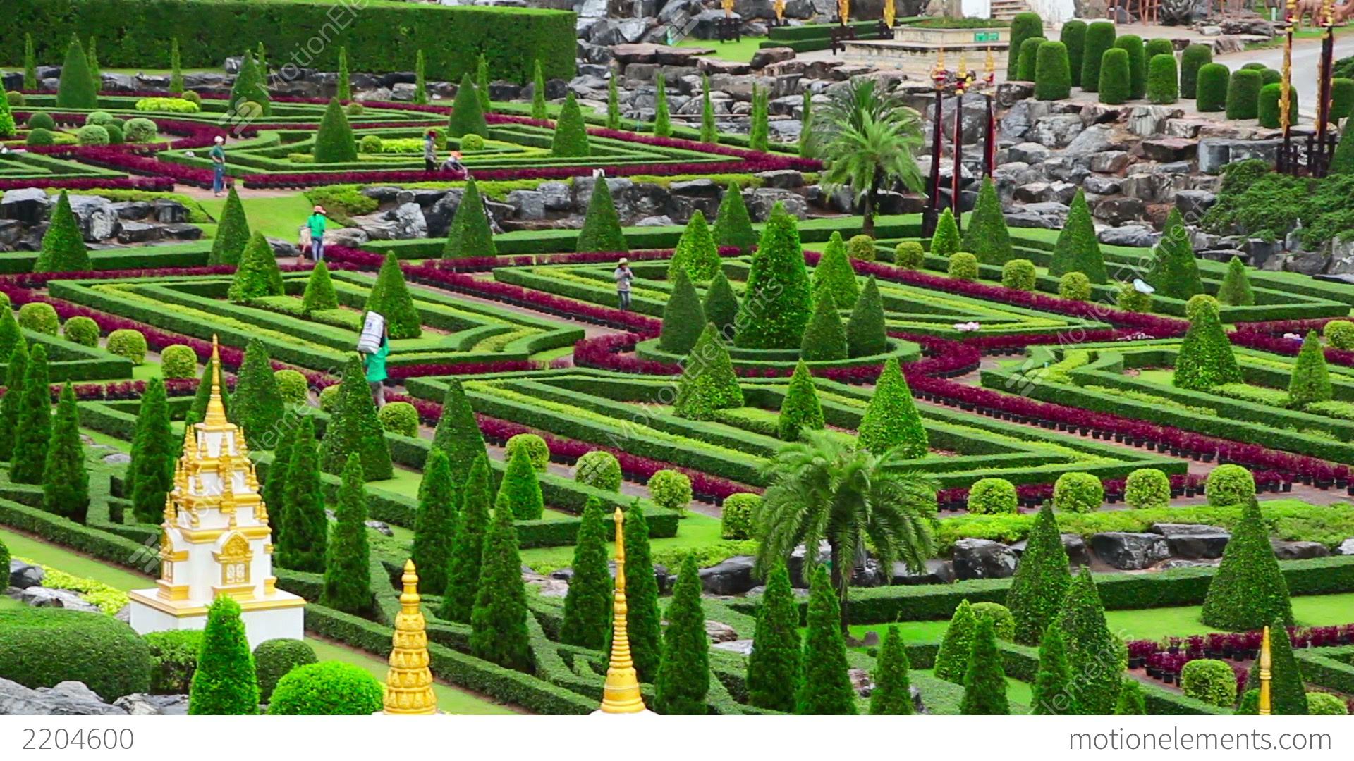 nong nooch tropical botanical garden in thailand stock video