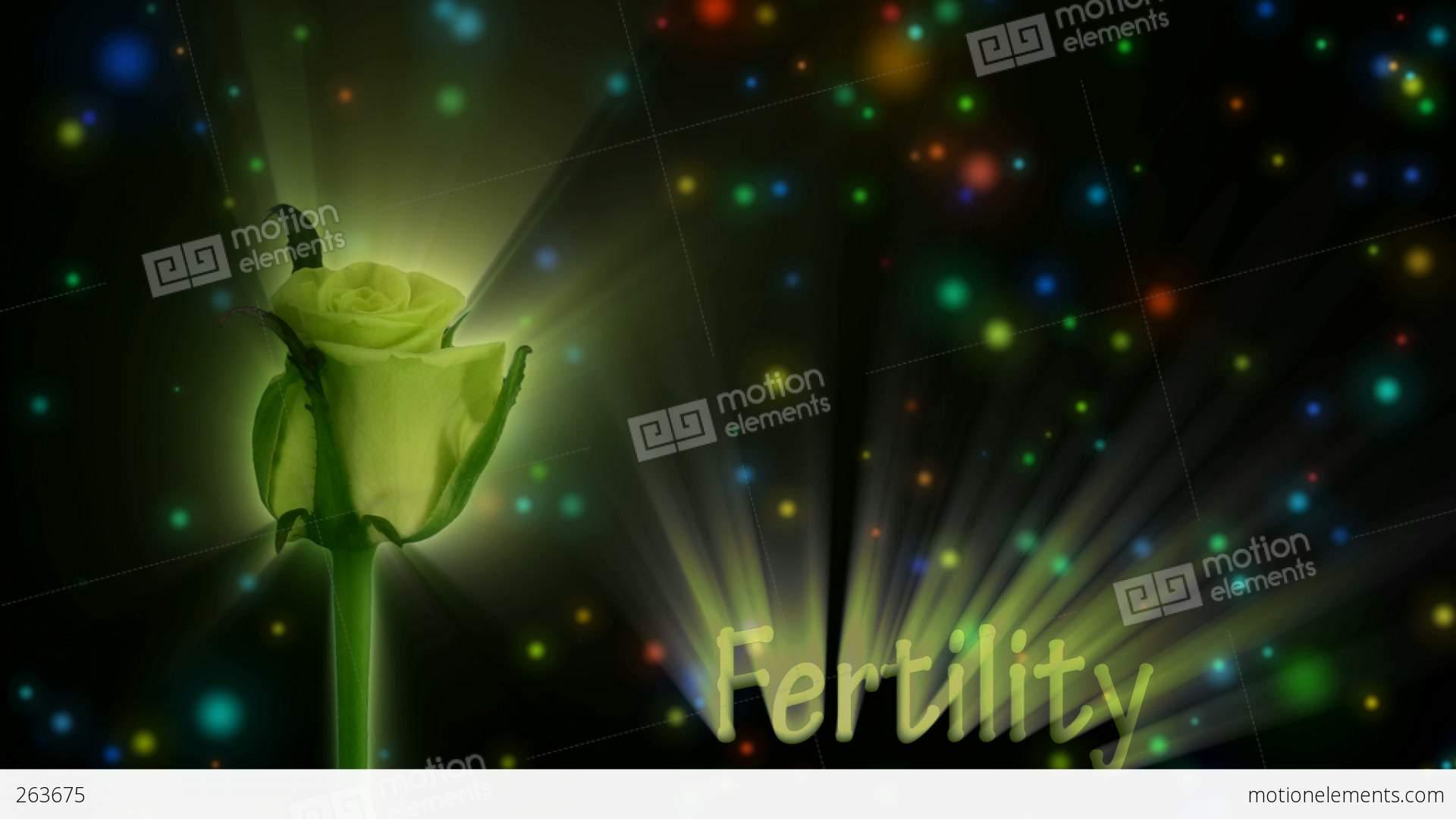 Green Rose \