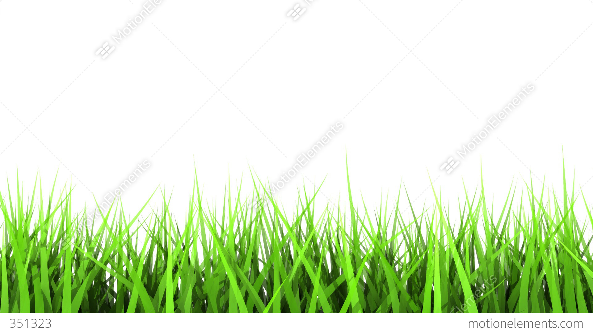 green grass on white background matte channel stock