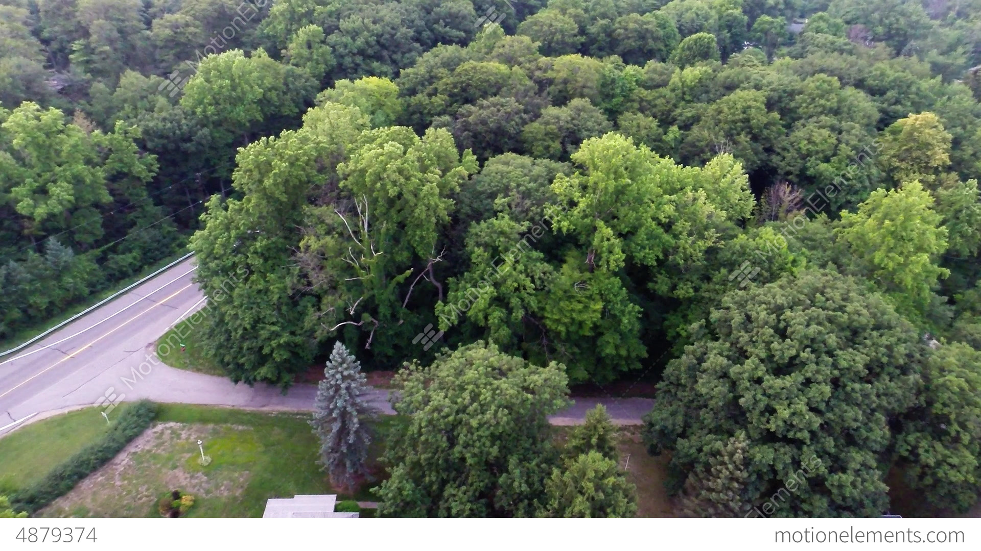 Aerial View Of Green Forest Treetops From Above In Stock ...