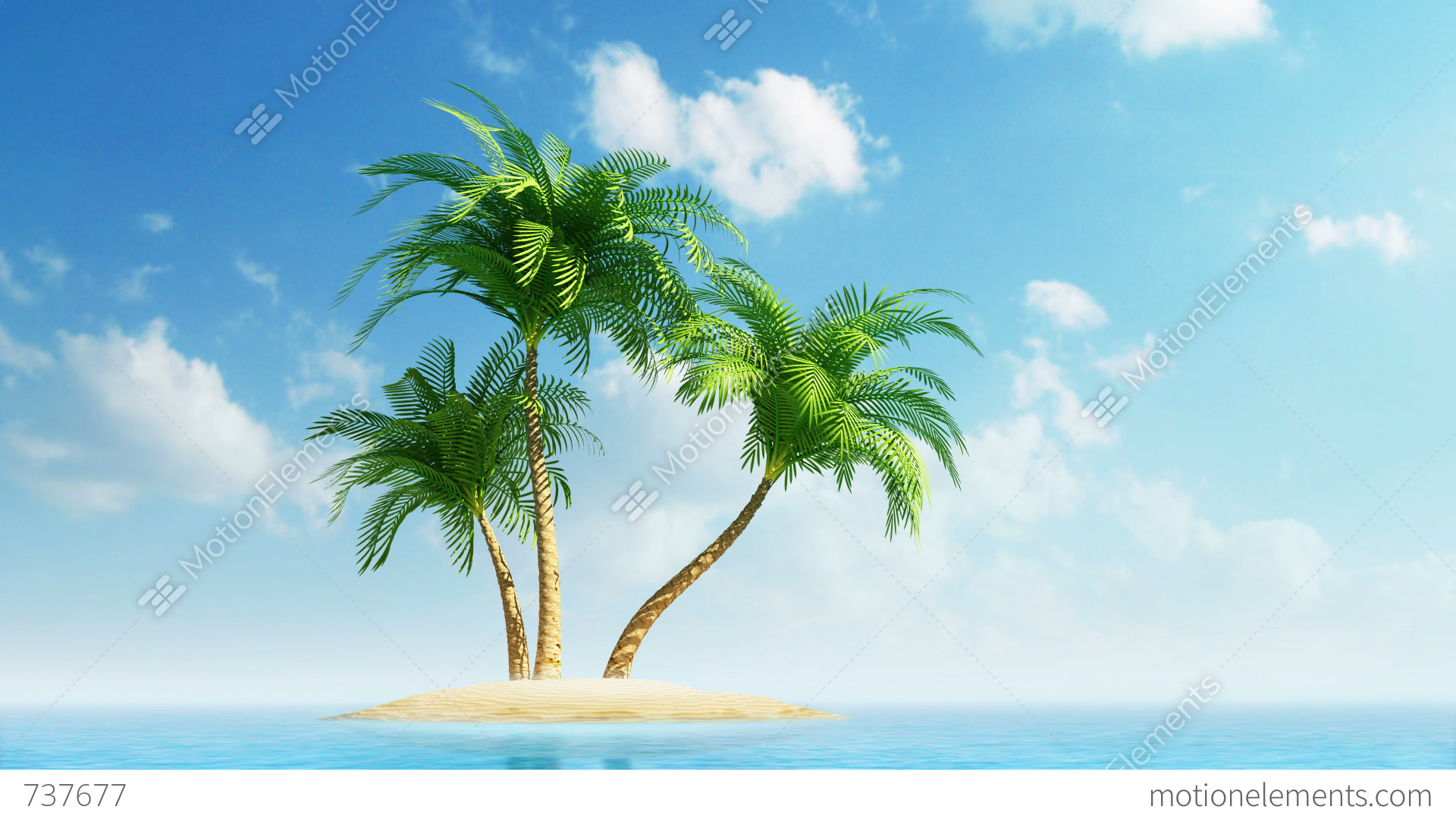 growing palm trees on island at sea stock animation 737677. Black Bedroom Furniture Sets. Home Design Ideas
