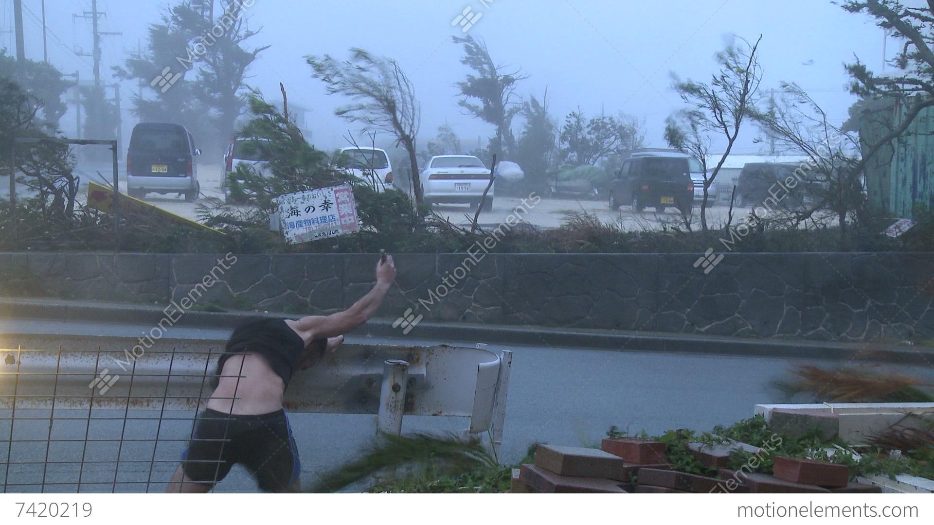 Hurricane Violent Winds Lash Scientist Flying Debris Stock ...