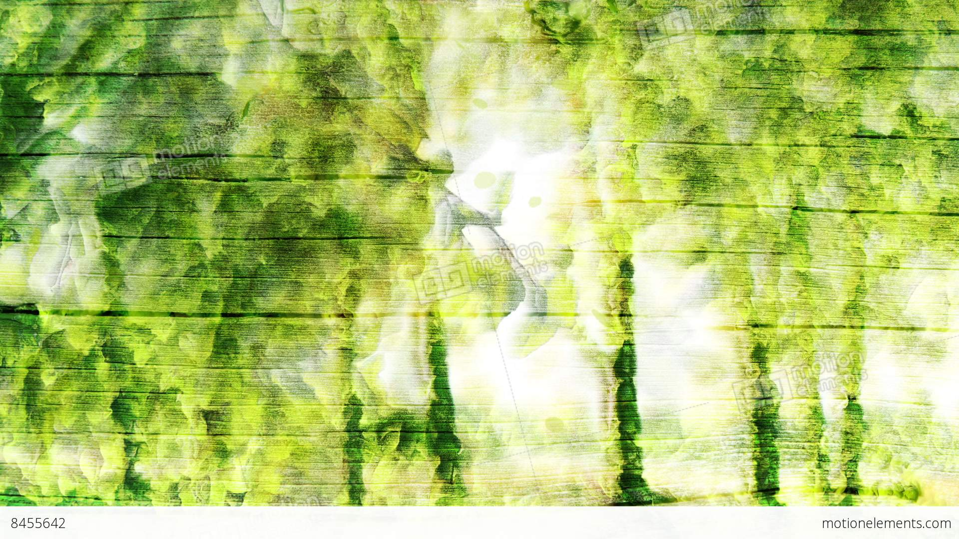 Green Forest Background Stock Animation