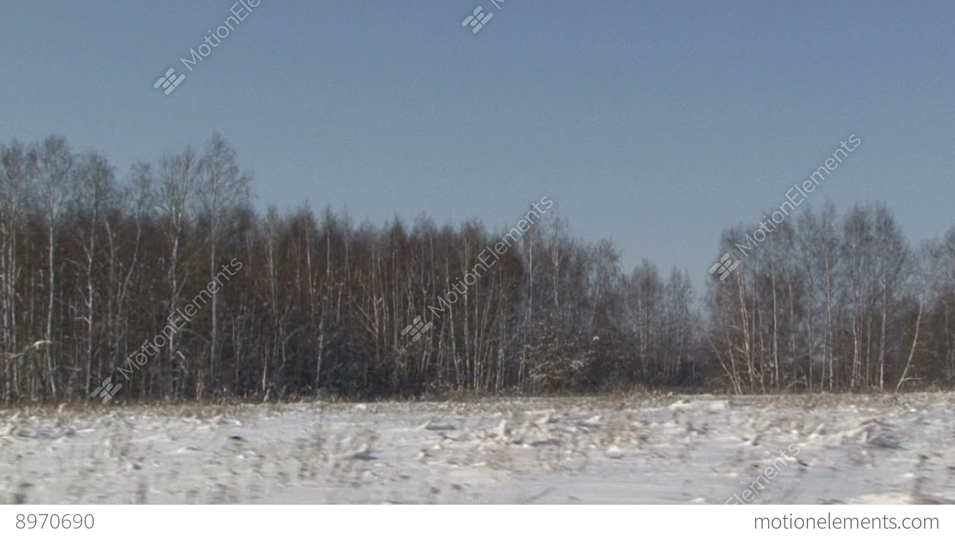christmas winter scene snow covered field moving camera stock