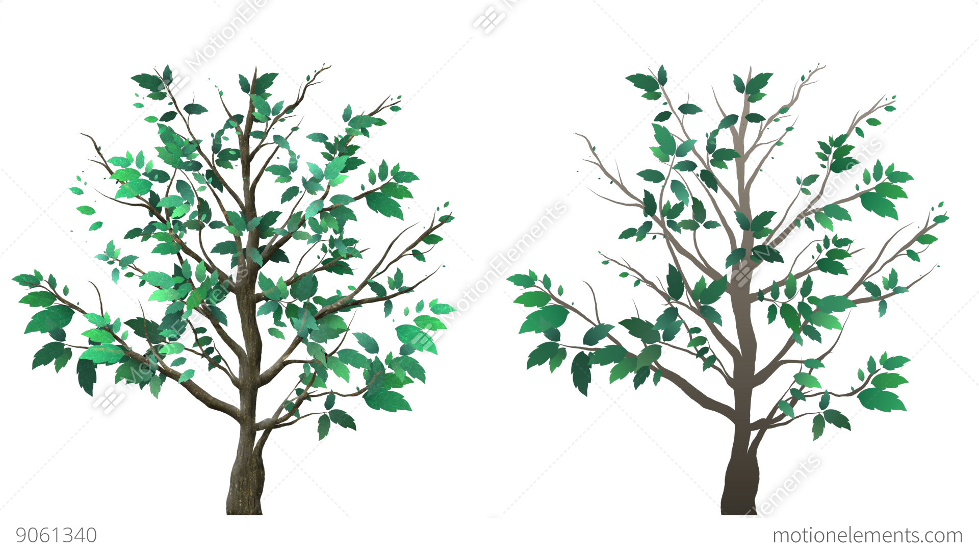 the growing tree Planting trees in containers is becoming more popular, especially in landscapes  with little or no outside space find tips for growing trees in.