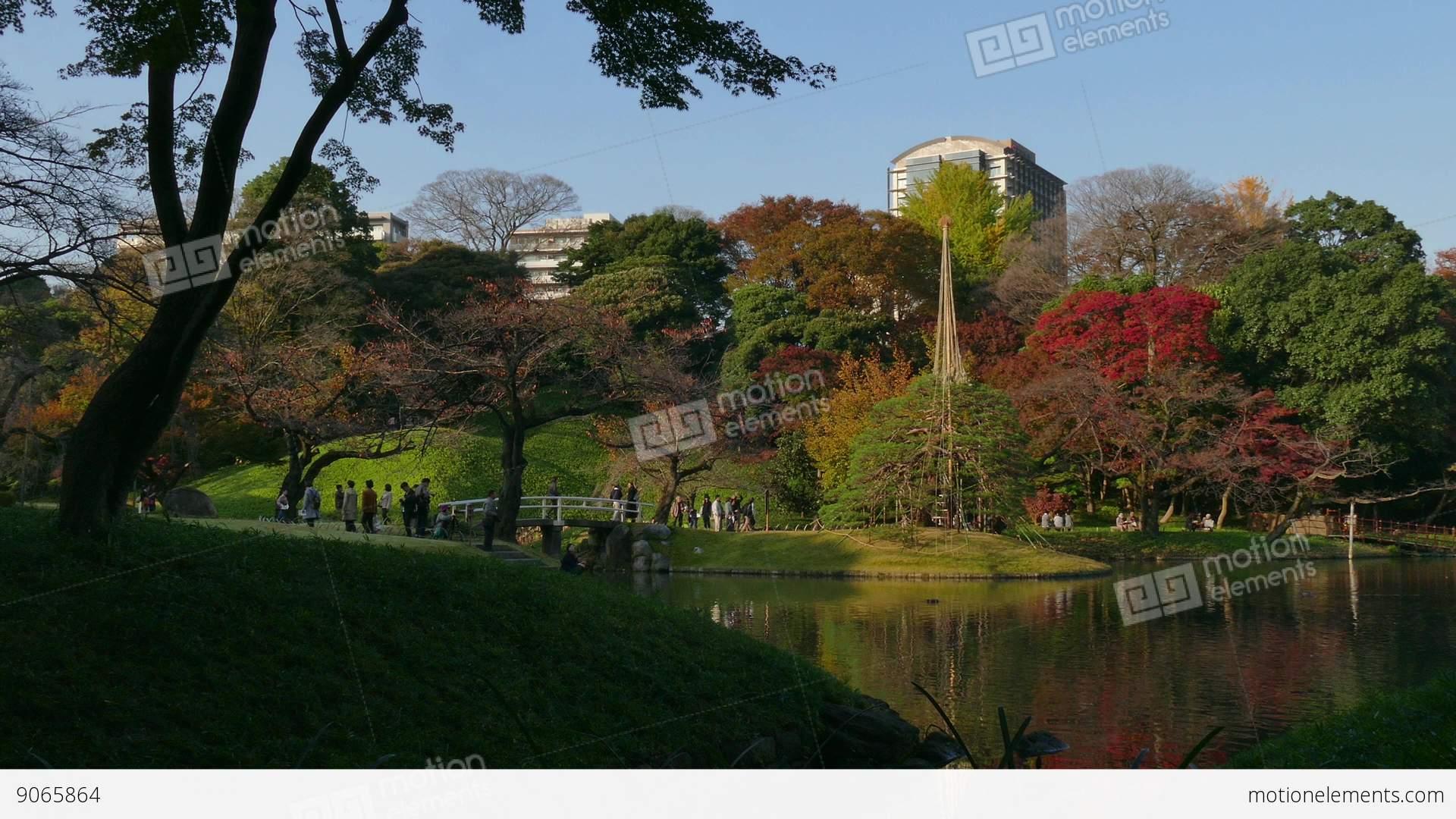 Koishikawa Korakuen Gardens Park Fall Autumn Trees Foliage Tokyo ...