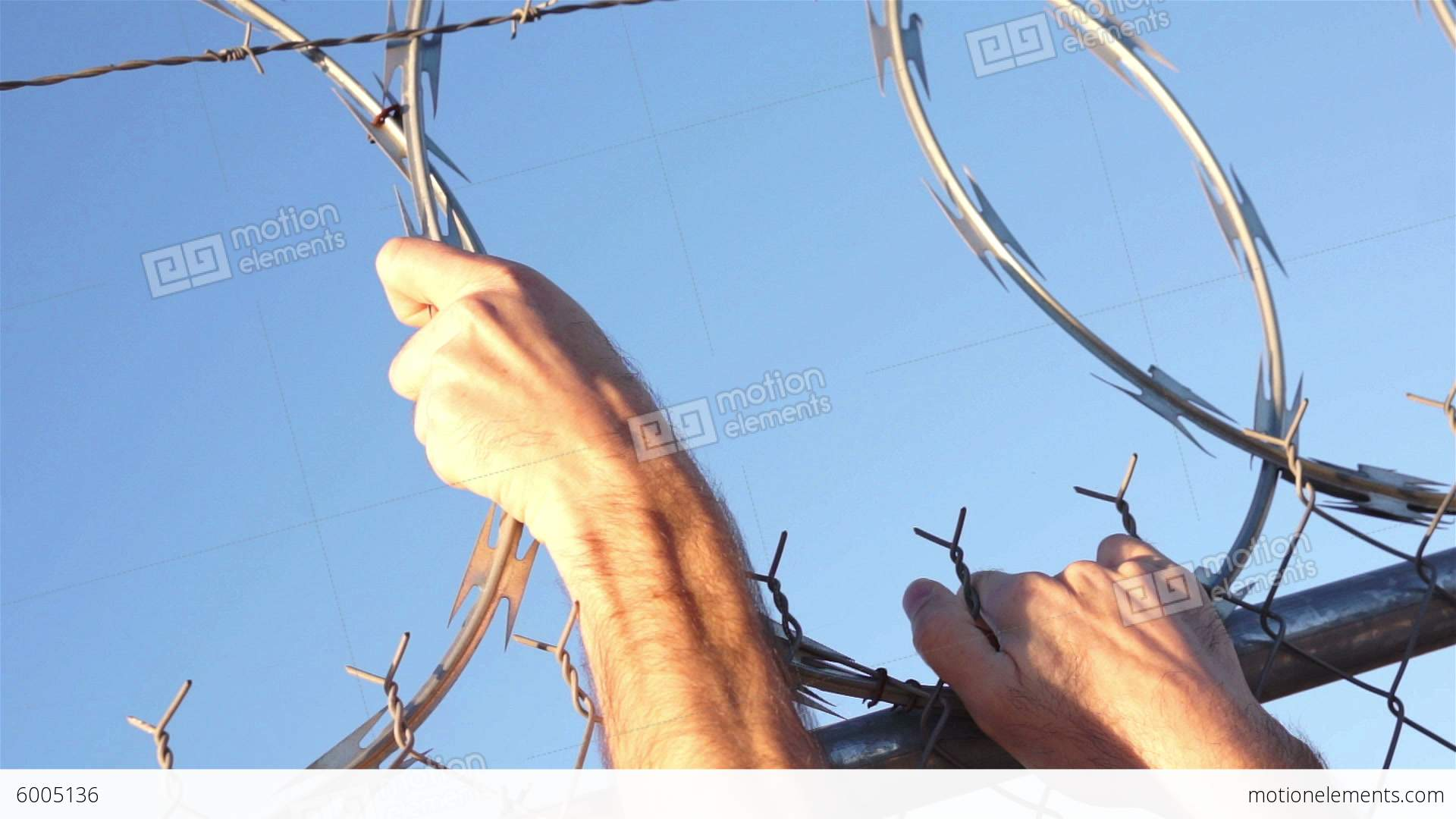 Razor Wire Fence Hands Grabbing Stock video footage | 6005136