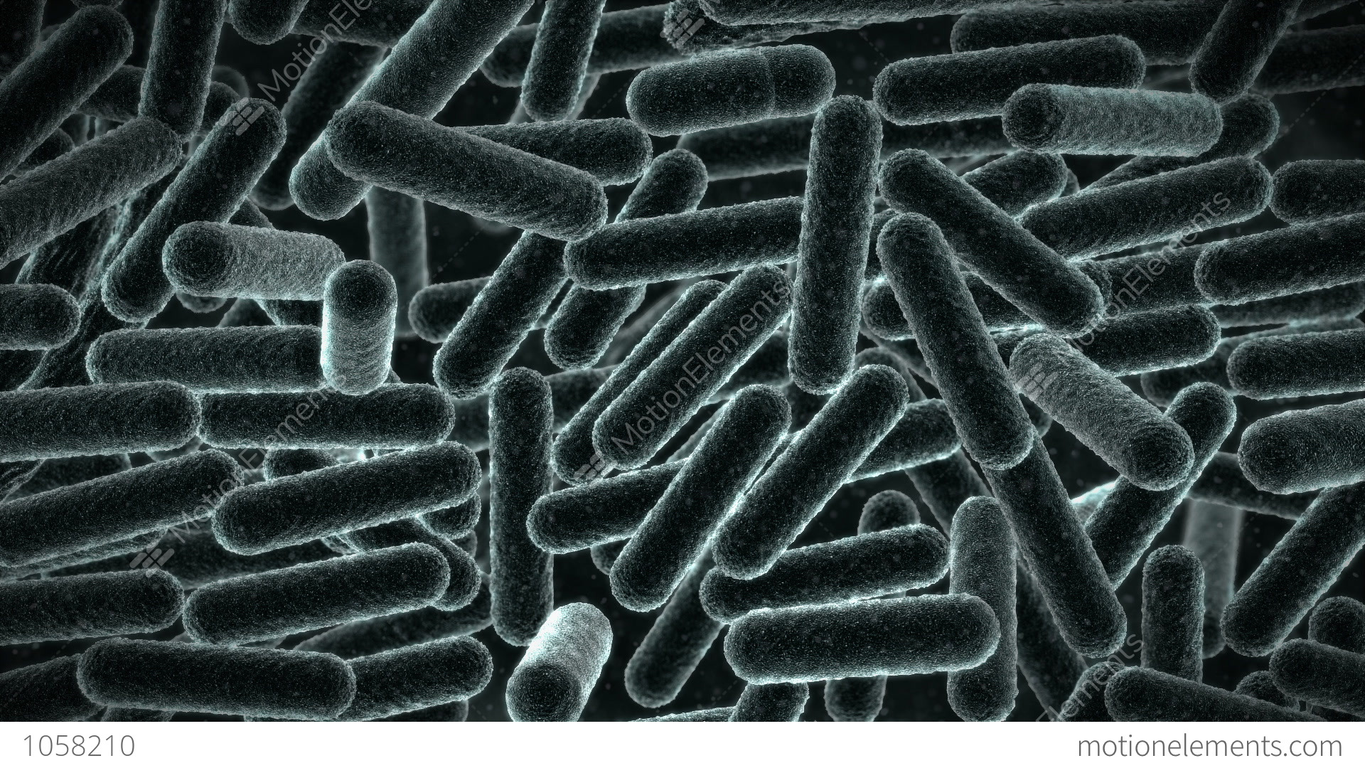 the personal opinion of the microscopic bacteria from space Bacteria within a biofilm can communicate with each other by producing,  of the  oral microbiome, including microscopy, cultural analysis, enzymatic assays  1),  and its loss can be detrimental to the health of the individual  bacterial  community variation in human body habitats across space and time.