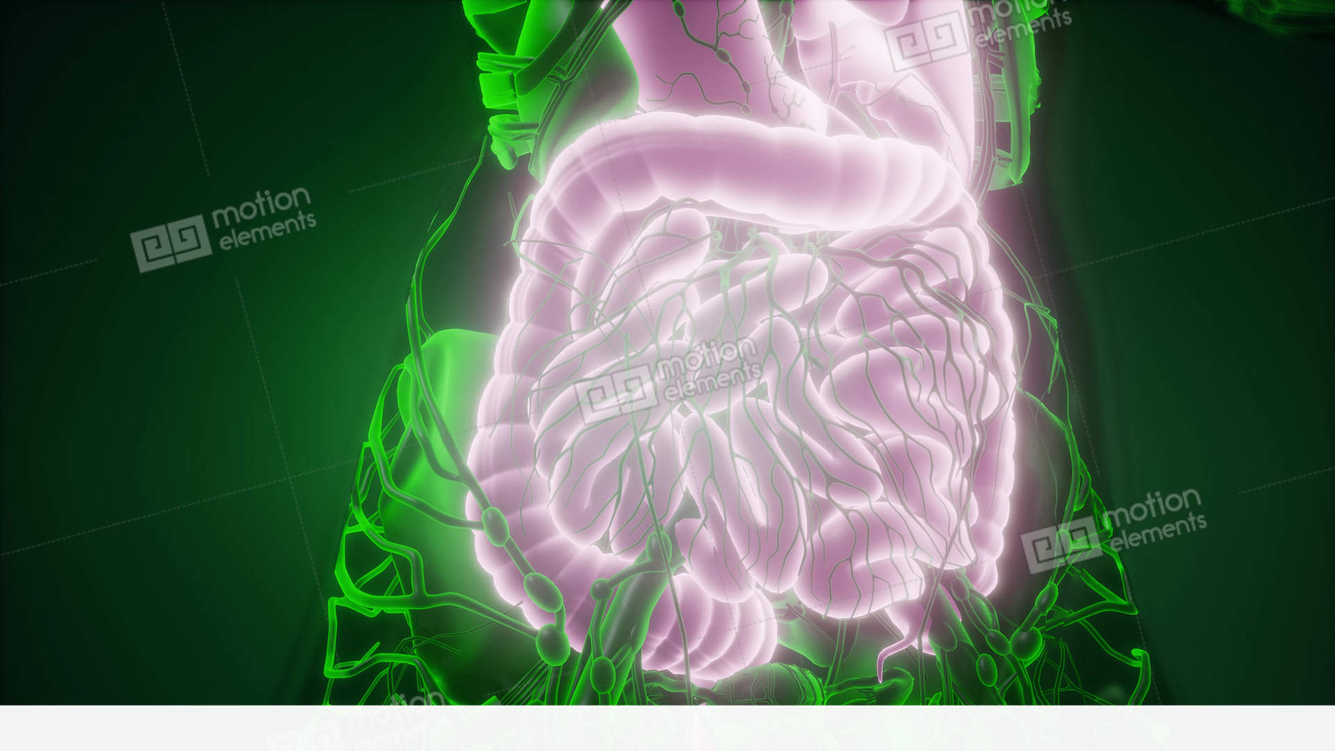 effect of alpha galactosidase on digestive system Severity of symptoms depends on how low your system is in the digestive enzymes causes the enzyme alpha-galactosidase is necessary to turn the glucose in complex carbohydrates into digestible hydrolyzed material.