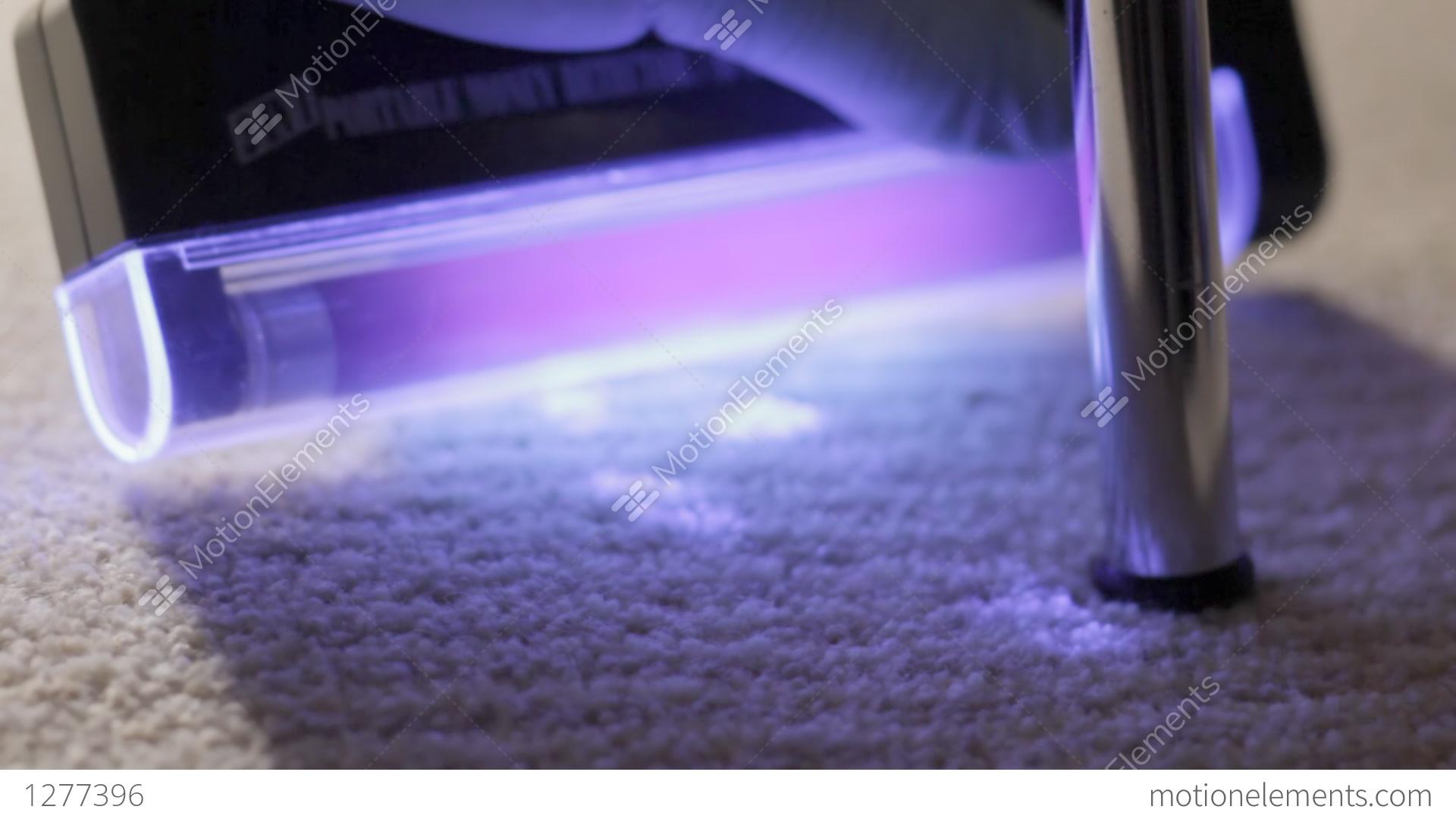 Blood Traces On Carpet Under Uv Light Stock Video Footage
