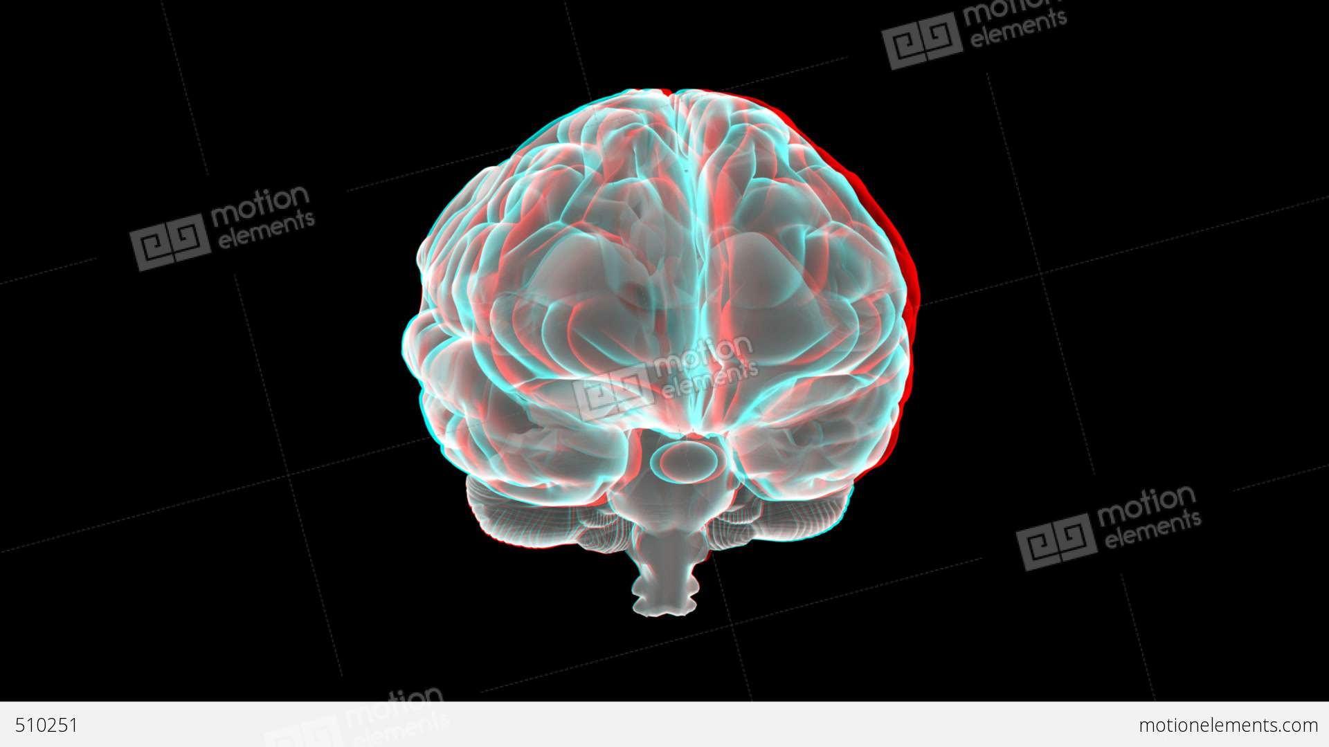 brain skull wallpapers driverlayer search engine