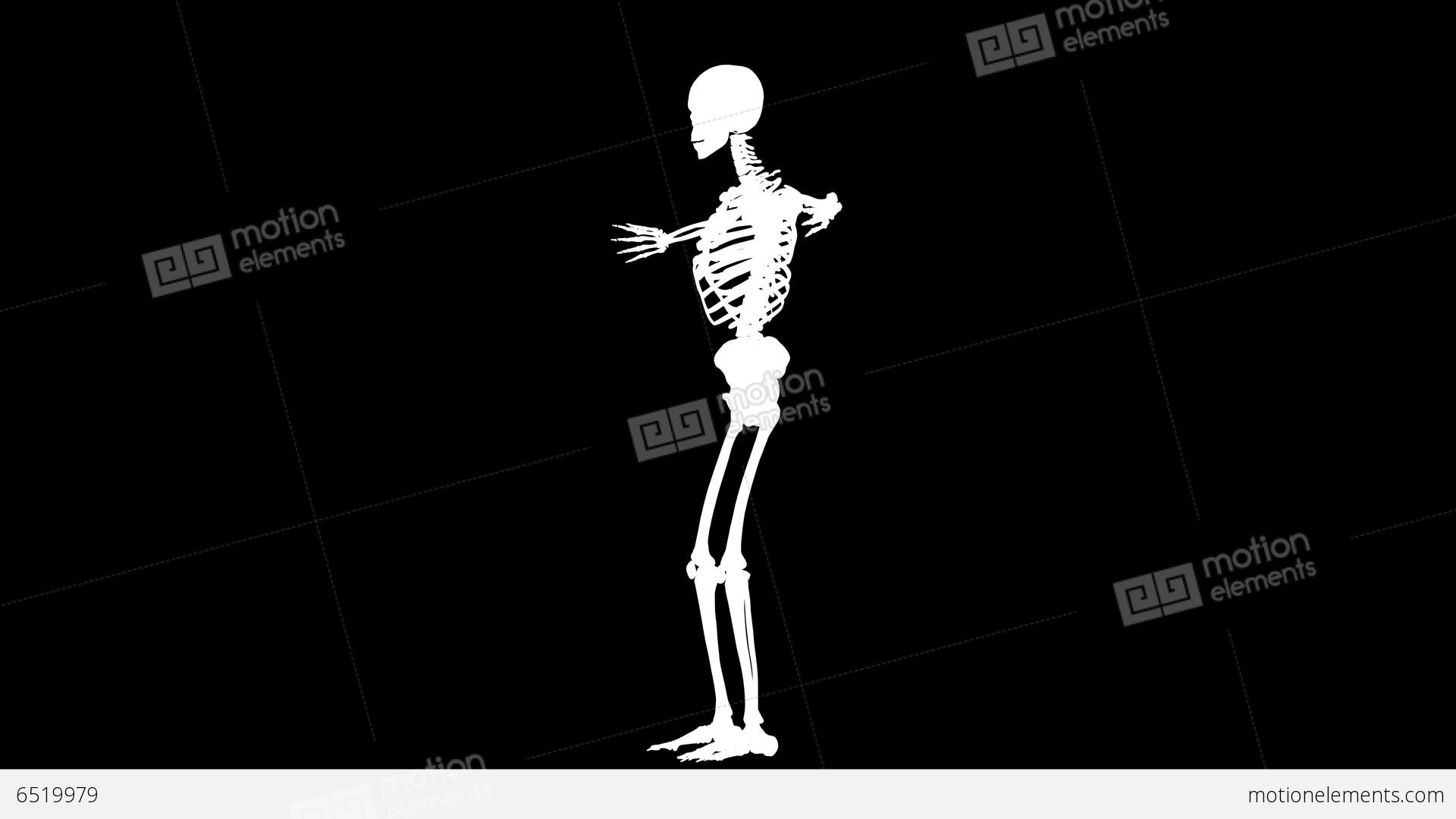 3d animation of human skeleton x ray blue interfac stock video, Skeleton