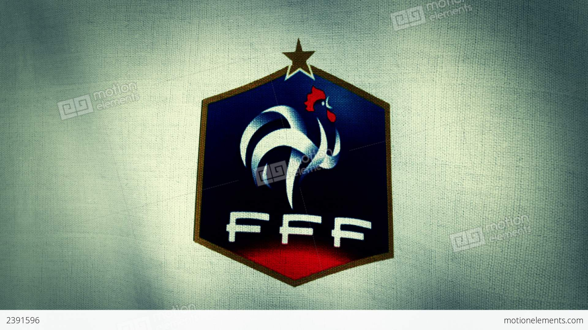 France national football team flag loopable stock animation 2391596 france national football team flag loopable stock video footage biocorpaavc Choice Image