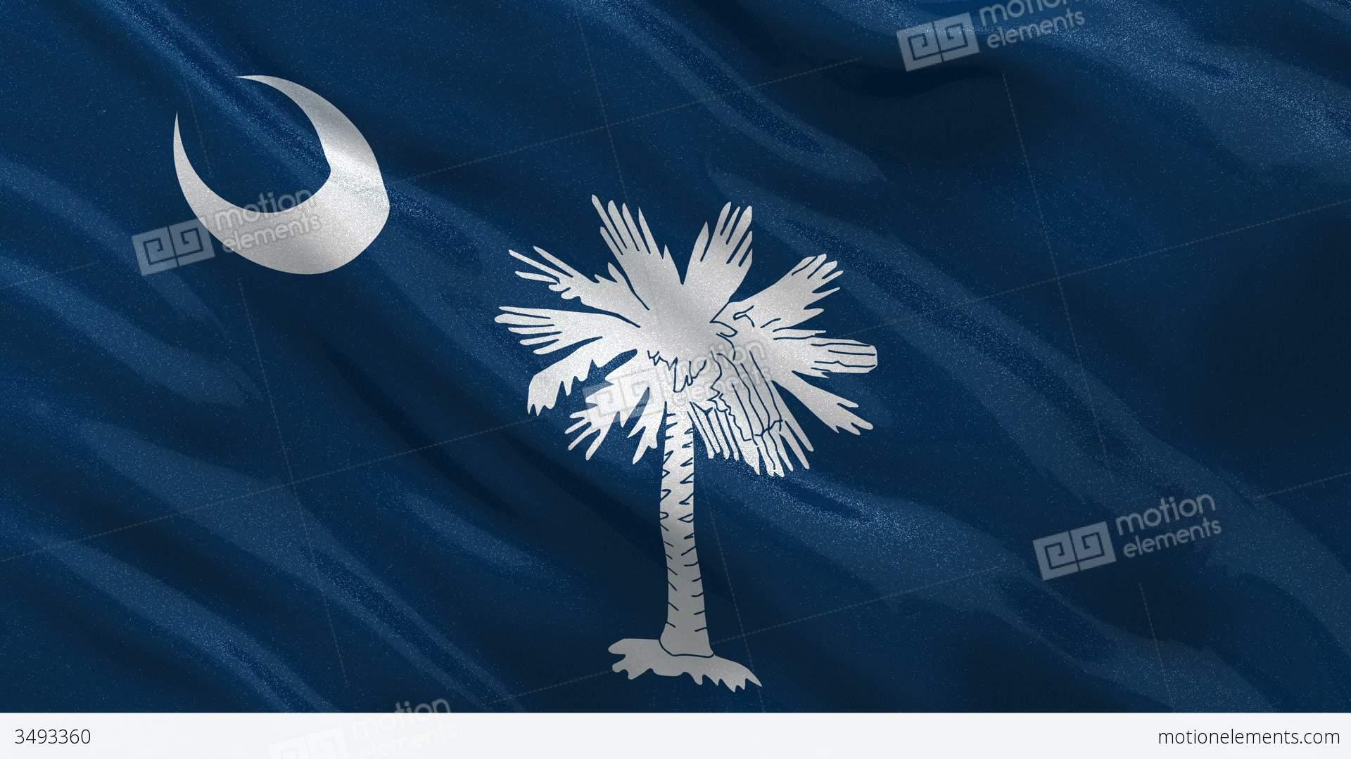 Us State Flag Of South Carolina Seamless Loop Stock Animation 3493360