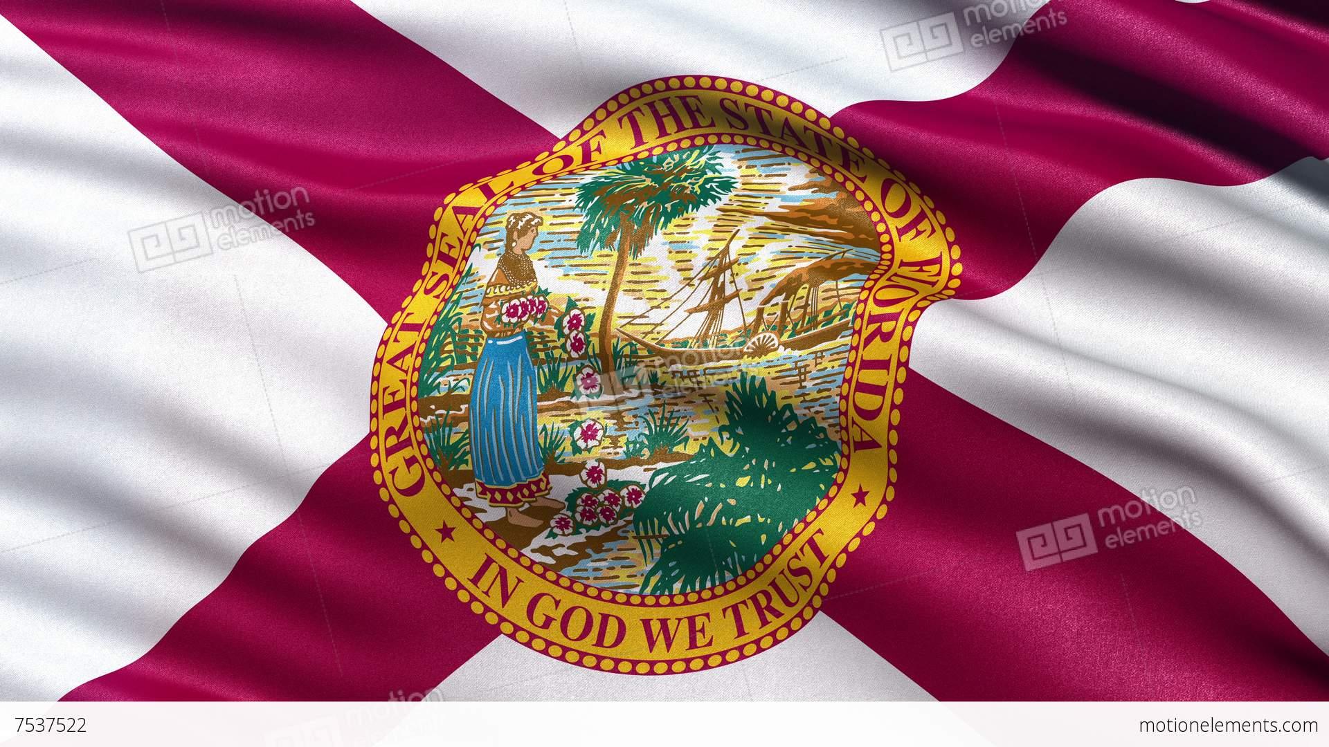 4k florida state flag seamless loop ultra hd stock animation 7537522 4k florida state flag seamless loop ultra hd stock video footage buycottarizona