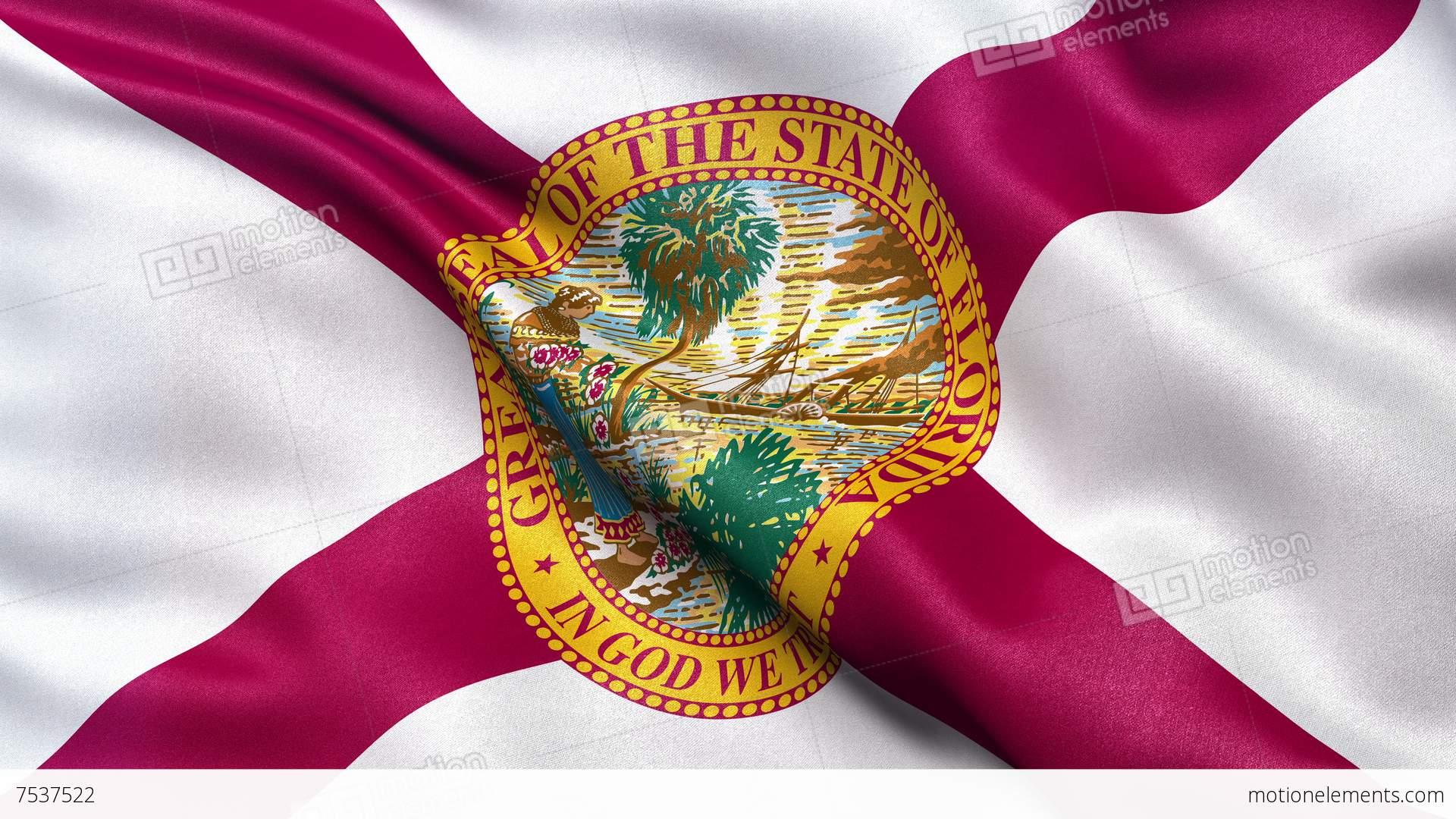4k florida state flag seamless loop ultra hd stock animation 7537522 4k florida state flag seamless loop ultra hd stock video footage symbols buycottarizona