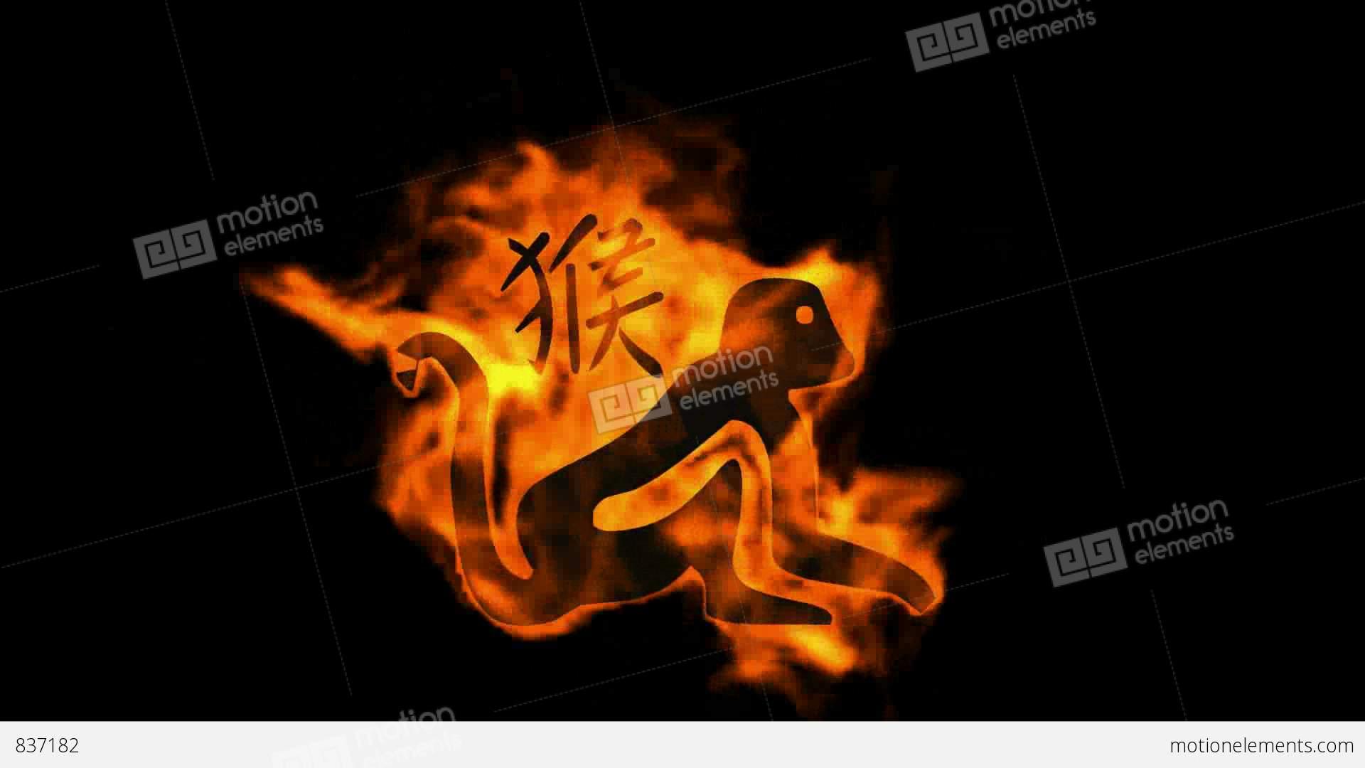 Chinese zodiac of fire monkey and handwriting chinese kanjichina chinese zodiac of fire monkey and handwriting chinese stock video footage biocorpaavc Gallery