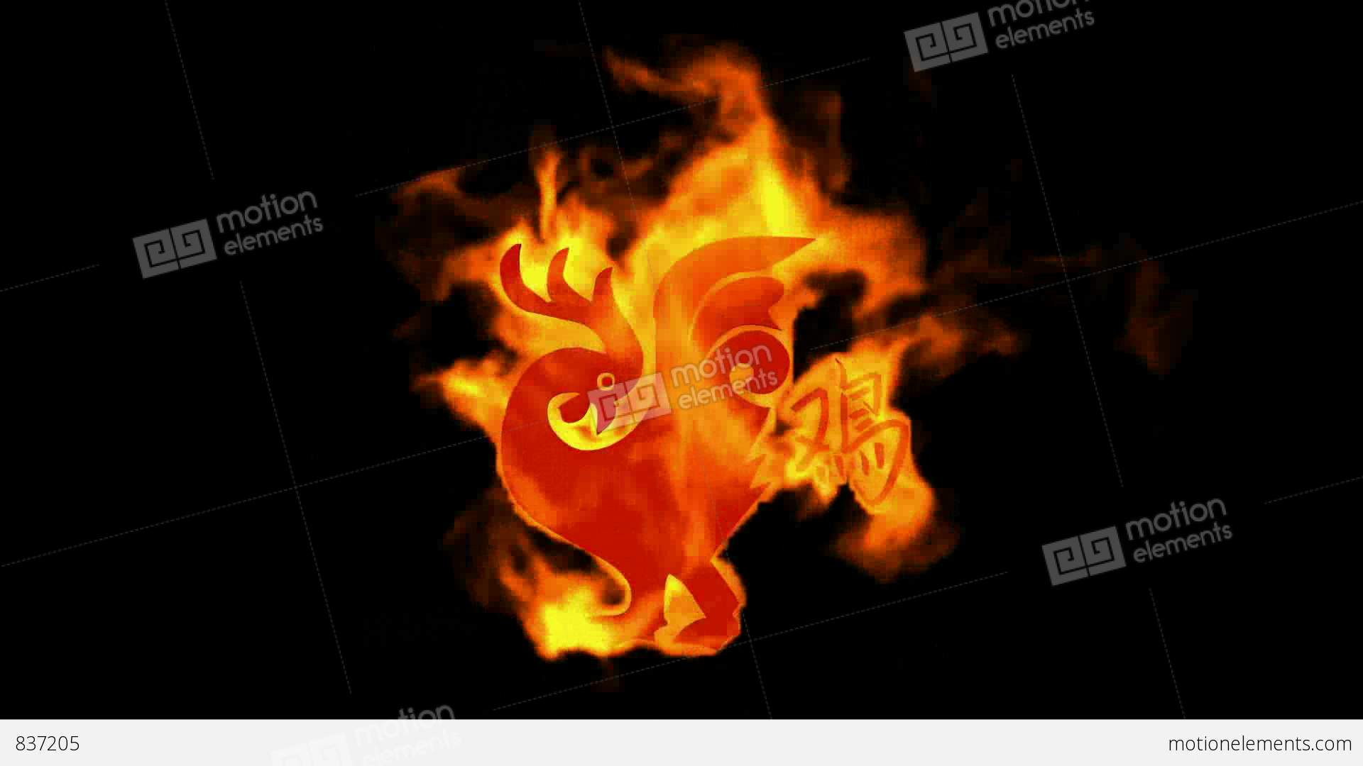 Chinese zodiac of fire chicken and handwriting chinese kanjichina chinese zodiac of fire chicken and handwriting chinese stock video footage biocorpaavc Gallery