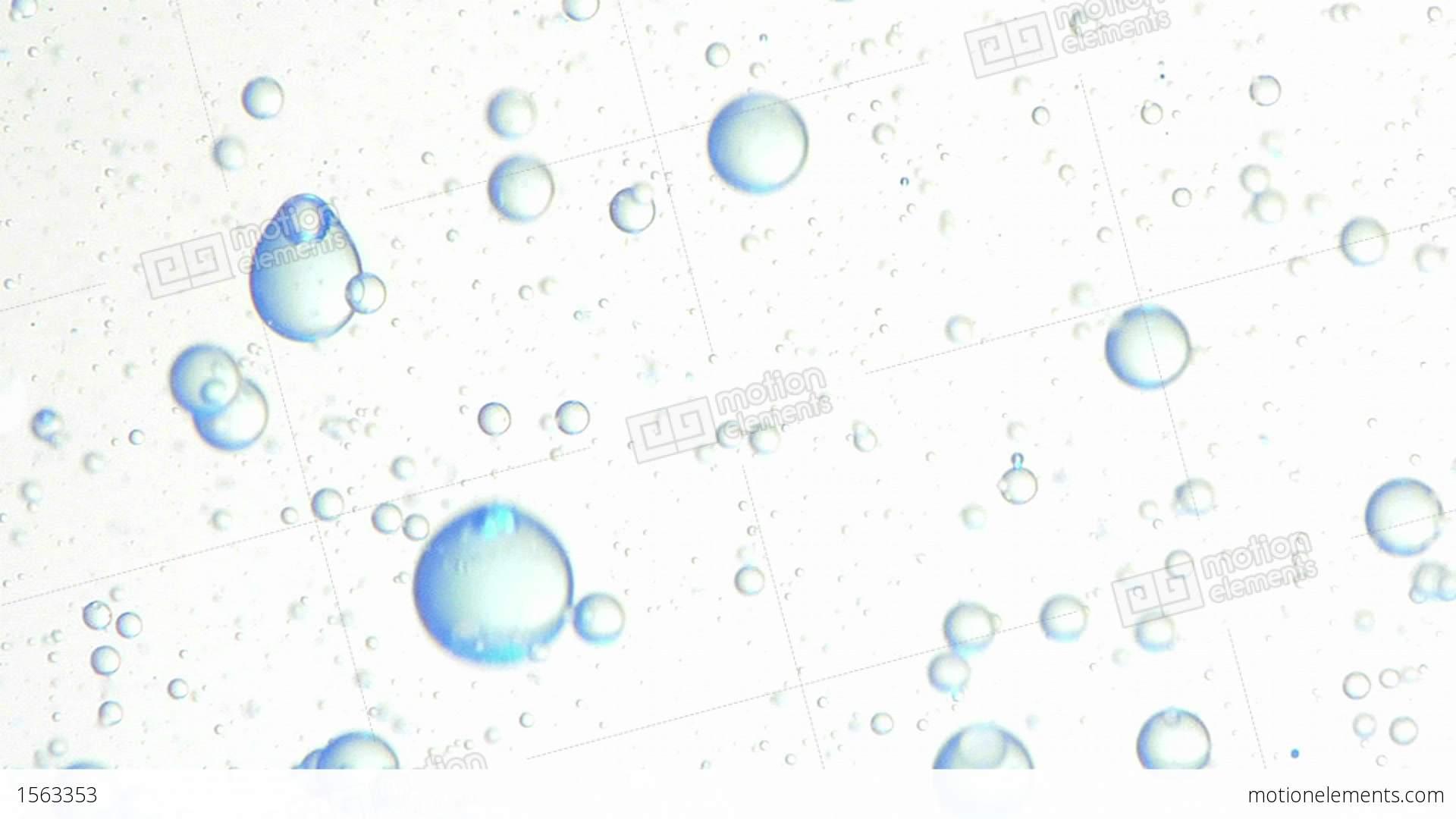 Oil Bubbles Form Interesting Liquid Patterns Stock video footage ...