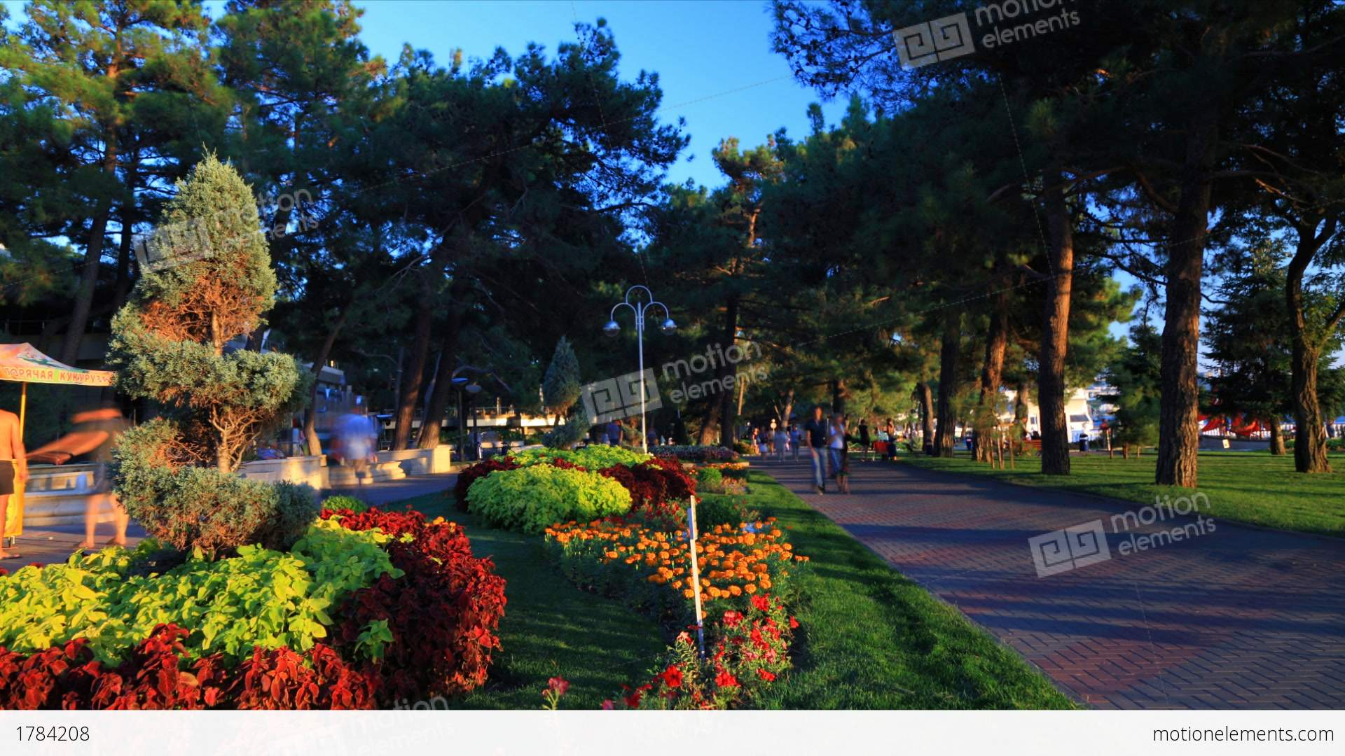 Gelendzhik Russia  City pictures : Gelendzhik City Sunset Timelapse, Russia Stock Video Footage | Royalty ...