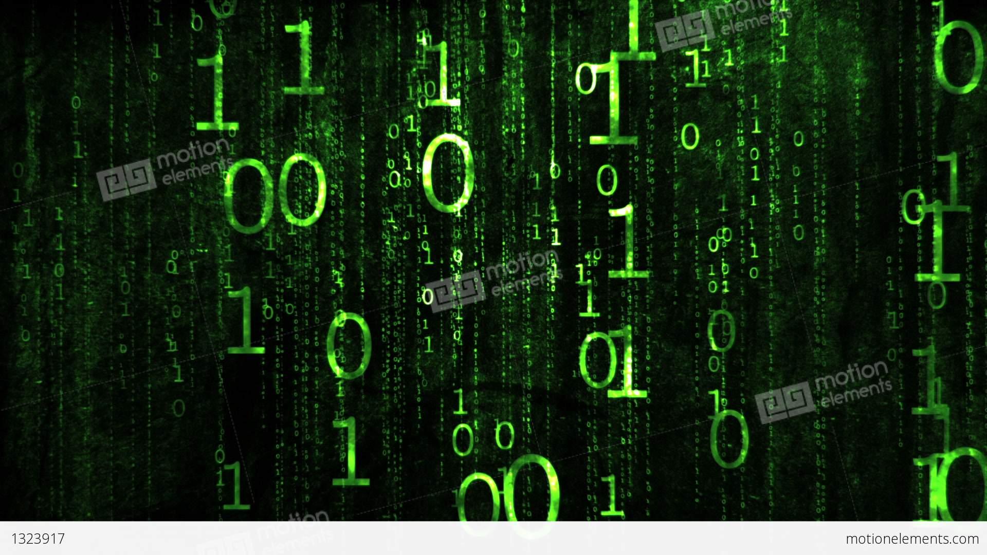 The binary system stocks