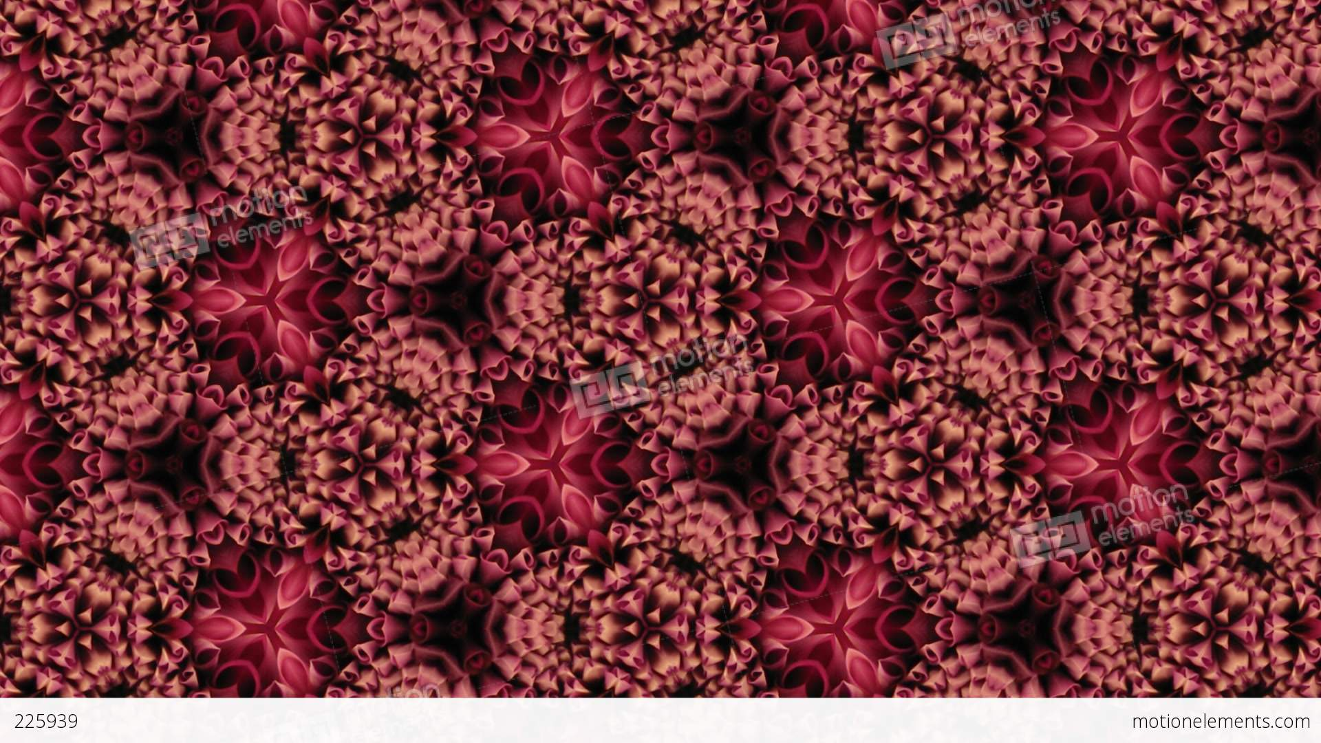 Organic Kaleidoscope From Blooming Red Dahlia Flower 13a Stock